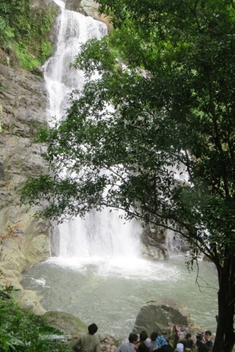 Song Thanh National Park