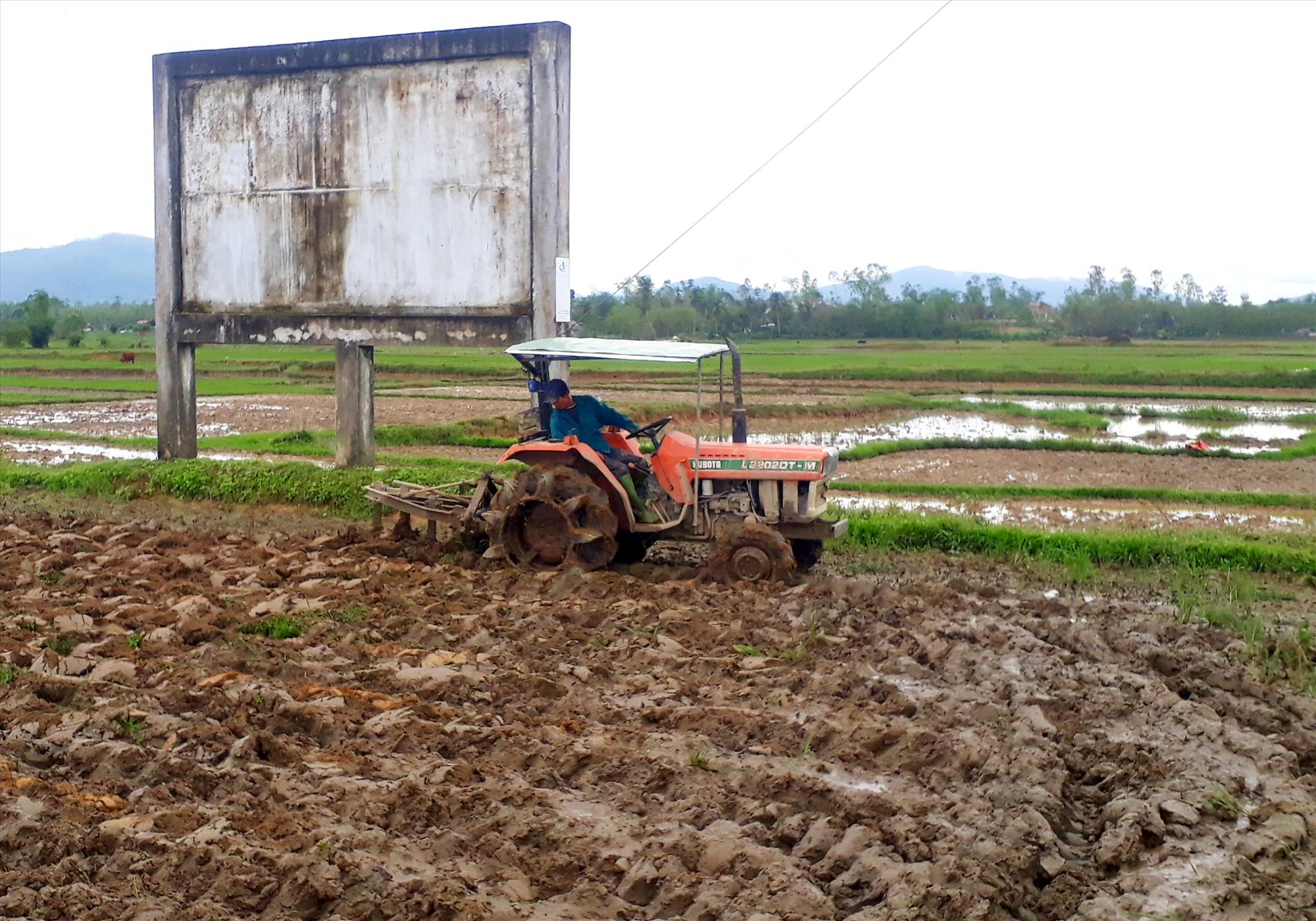 Những ngày qua, nông dân trên địa bàn tỉnh khẩn trương làm đất để triển khai gieo sạ vụ đông xuân 2020 - 2021. Ảnh: VĂN SỰ