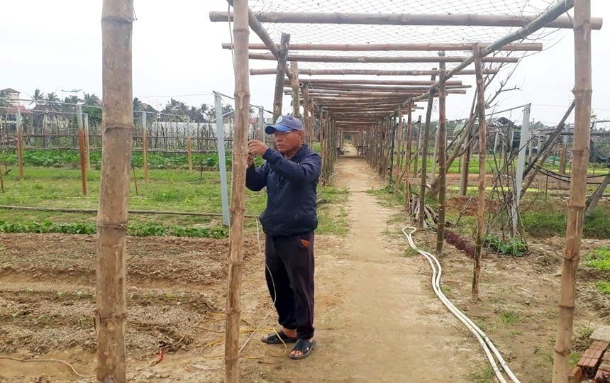 Bà con nông dân thôn Thanh Đông đang tất bật làm đất, sửa giàn leo vườn rau hữu cơ.