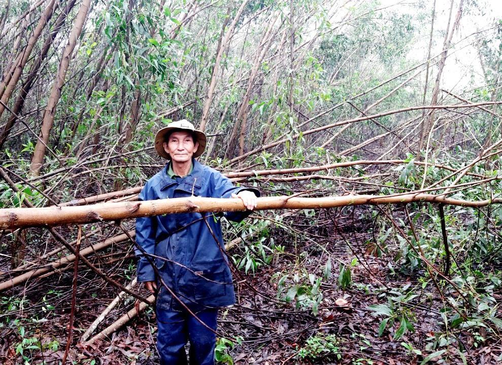 Ông Trần Lựu bày tỏ không đồng tình việc bị chặt cây trồng ngoài hàng lang an toàn lưới điện mà không nhận được thông báo của ngành điện. Ảnh: VIỆT NGUYỄN