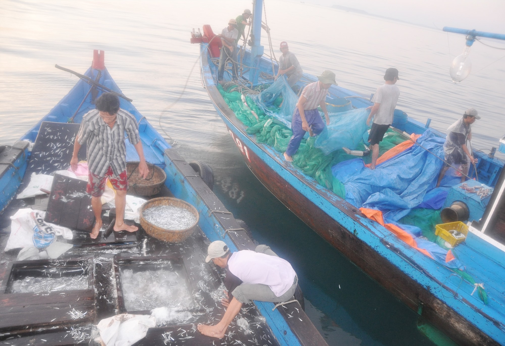 Rỗi cá cập mạn phương tiện khai thác hải sản để mua cá. Ảnh: H.Q