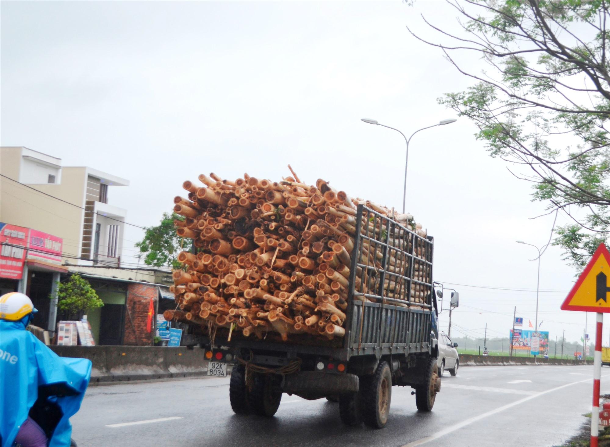 Xe tải chở keo quá kích thước thành thùng lưu thông trên quốc lộ 1, đoạn qua xã Tam Xuân 1, Núi Thành. Ảnh: K.K