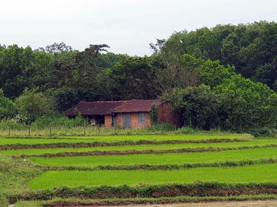 Một góc làng Đo Đo.