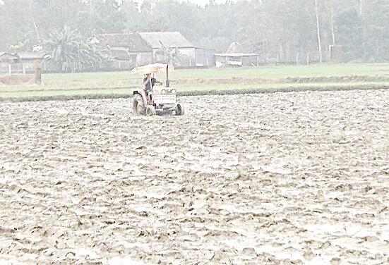 Nhờ áp dụng cơ giới hóa vào sản xuất, nông dân xã Bình Chánh tiết kiệm thời gian, công lao động. Ảnh: M.T