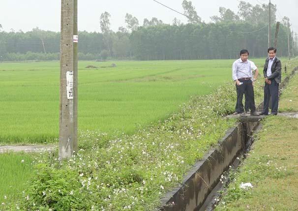 Mặc dù cây lúa đang giai đoạn phát triển nhưng nhiều tuyến kênh nội đồng do Chi nhánh Thủy lợi Thăng Bình quản lý đã cắt nước, thực hiện tưới luân phiên. Ảnh: MINH TÂN