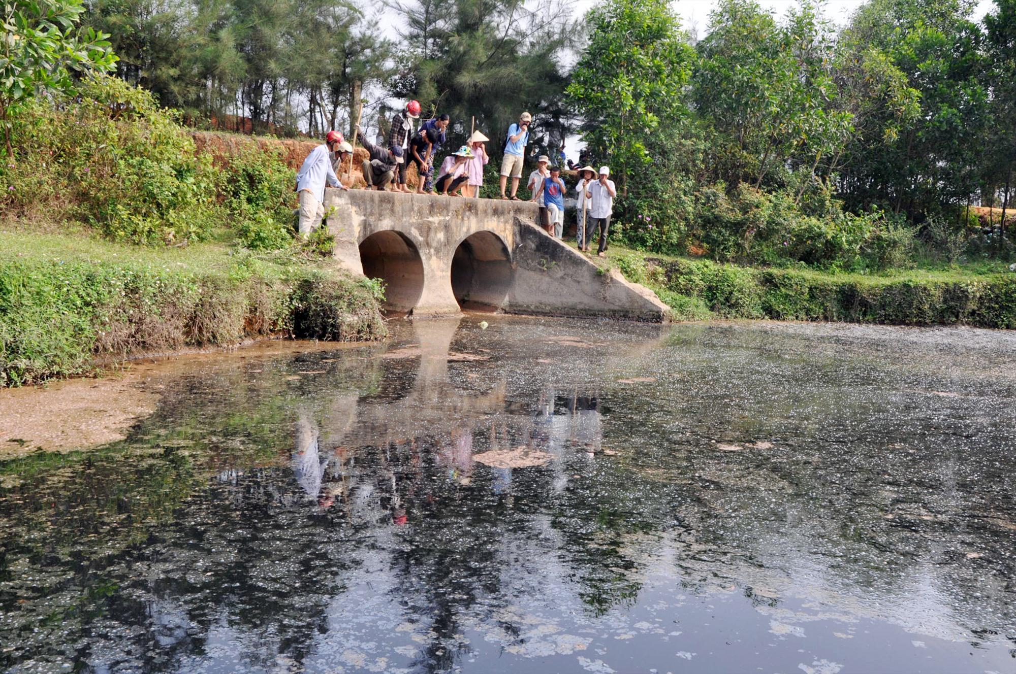 Nước thải từ nhà máy sản xuất công nghiệp ra một cống nước tại cánh đồng thôn Thọ Khương, xã Tam Hiệp (Núi Thành) cách đây vài năm. Ảnh: T.N