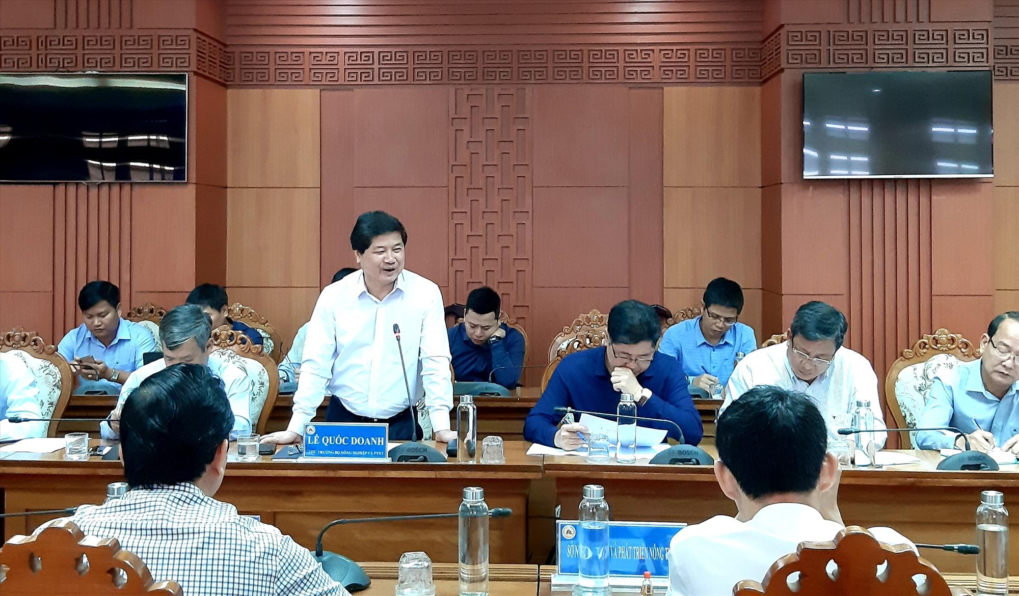 Thứ trưởng Bộ NN&PTNT Lê Quốc Doanh phát biểu tại cuộc làm việc với Chủ tịch UBND tỉnh Lê Trí Thanh và các ngành liên quan sáng nay 7.2.    Ảnh: N.S