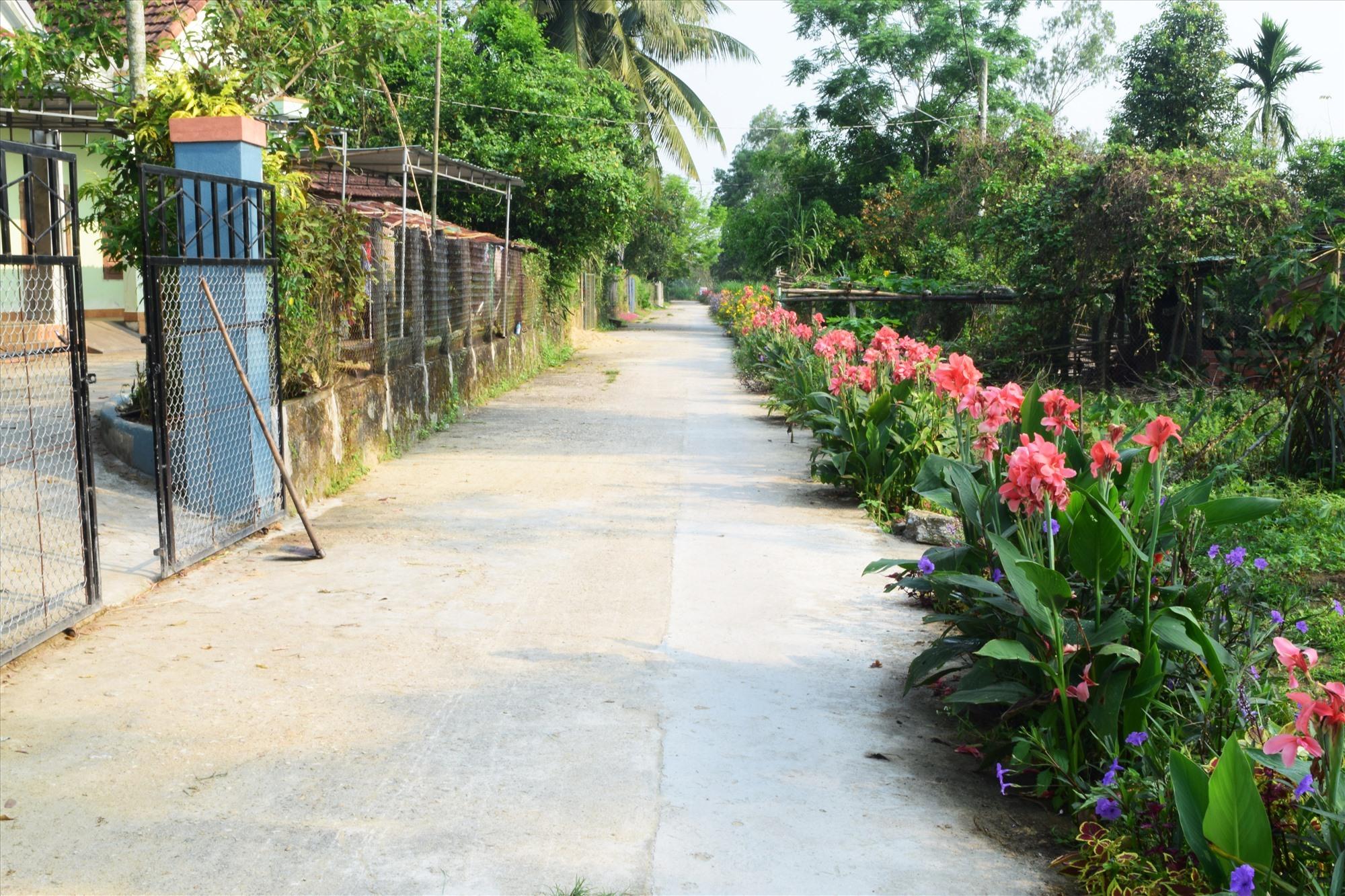 Các loại hoa khoe sắc trên tuyến đường thanh niên kiểu mẫu của Đoàn xã Tam Vinh. Ảnh: THÁI CƯỜNG