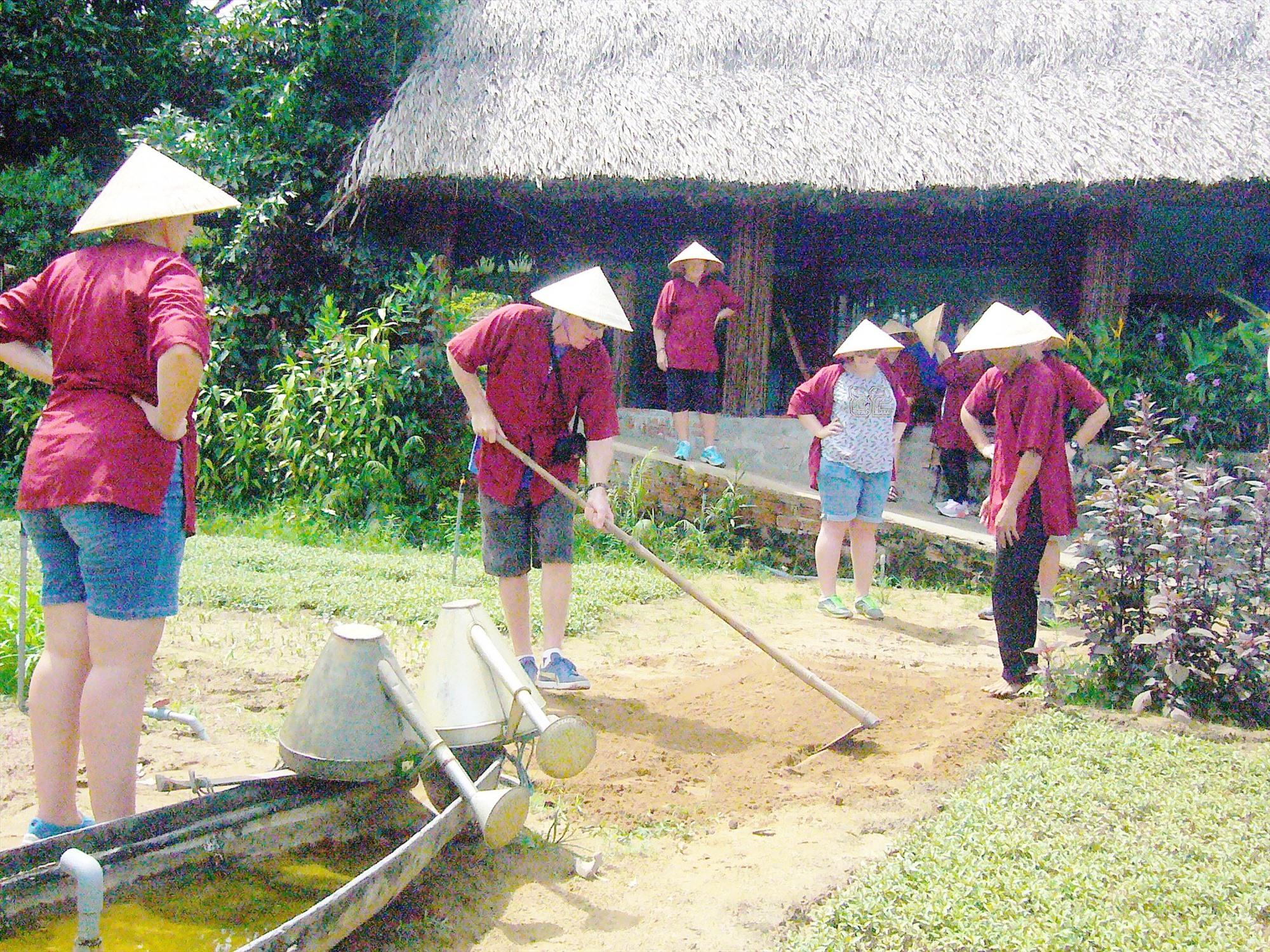 Du khách trải nghiệm nghề trồng rau ở Trà Quế, xã Cẩm Hà. Ảnh: Đ.H