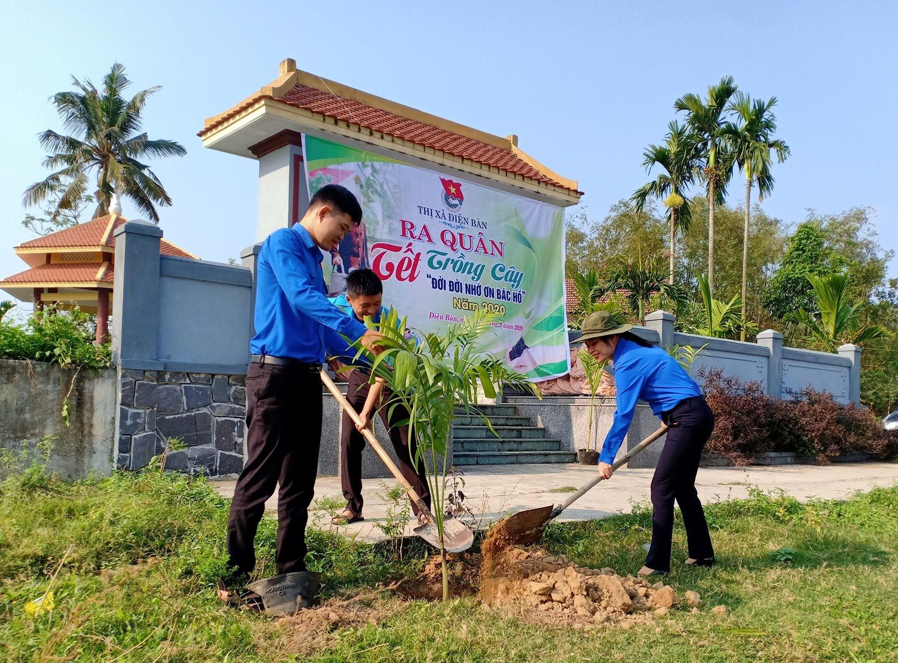 Tuổi trẻ thị xã Điện Bàn trồng hàng ngàn cây xanh sau lễ phát động Tháng Thanh niên. Ảnh: T.NHÂN