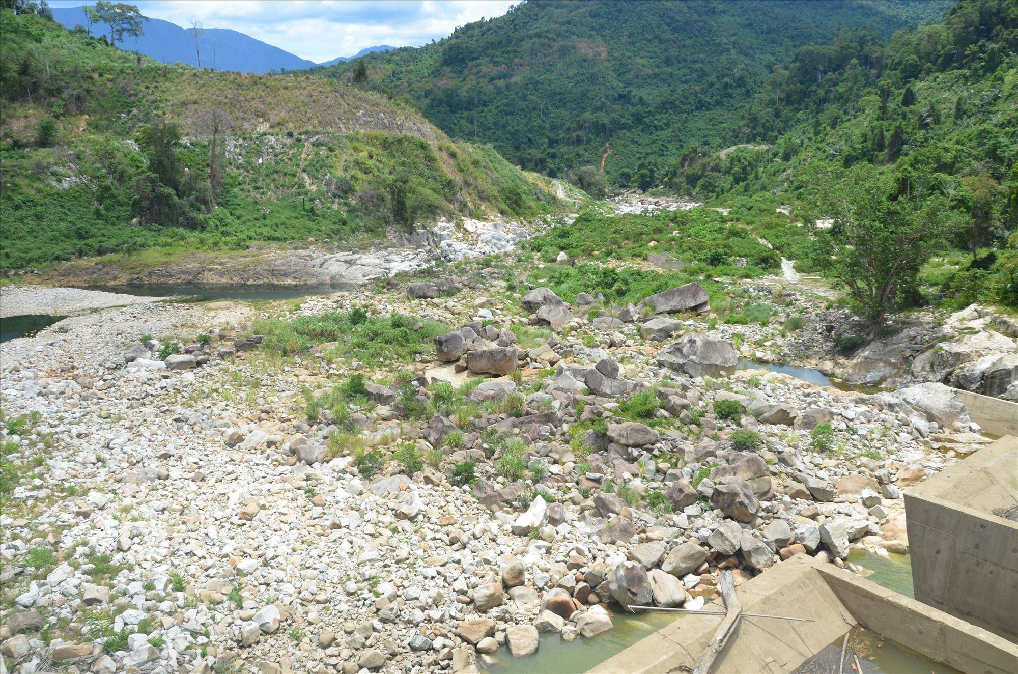 Chưa vào mùa khô nhưng nhiều con sông ở thượng nguồn Vu Gia khô đáy.Ảnh: T.H