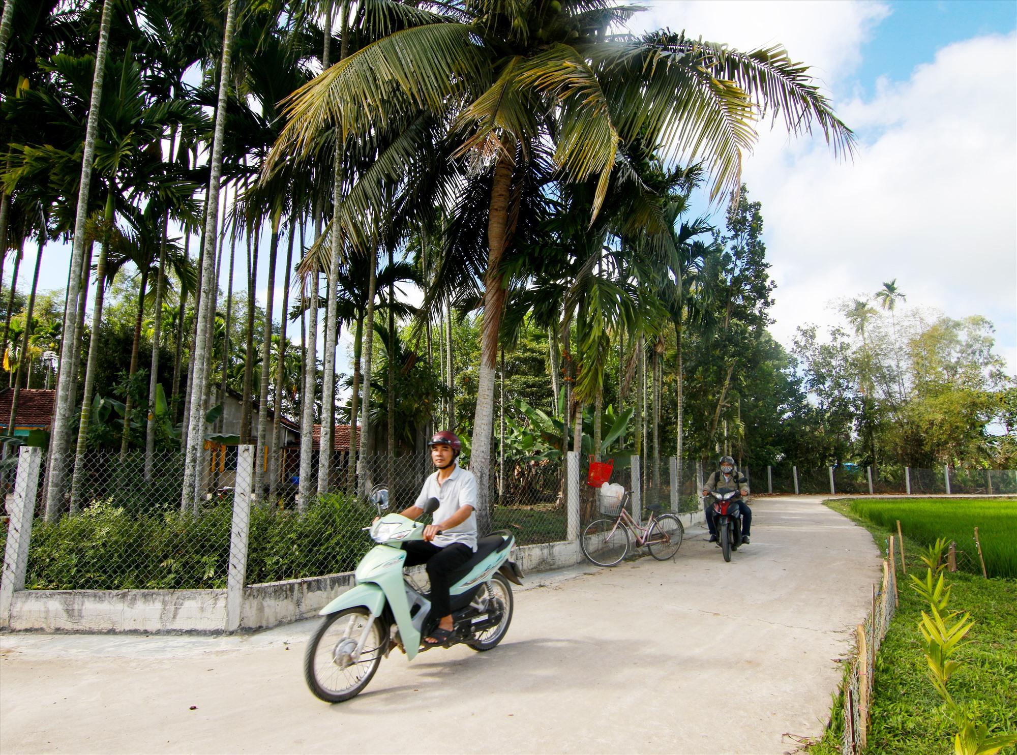 Diện mạo làng quê nông thôn mới Tam Xuân 2 ngày càng khởi sắc. Ảnh: C.Đ