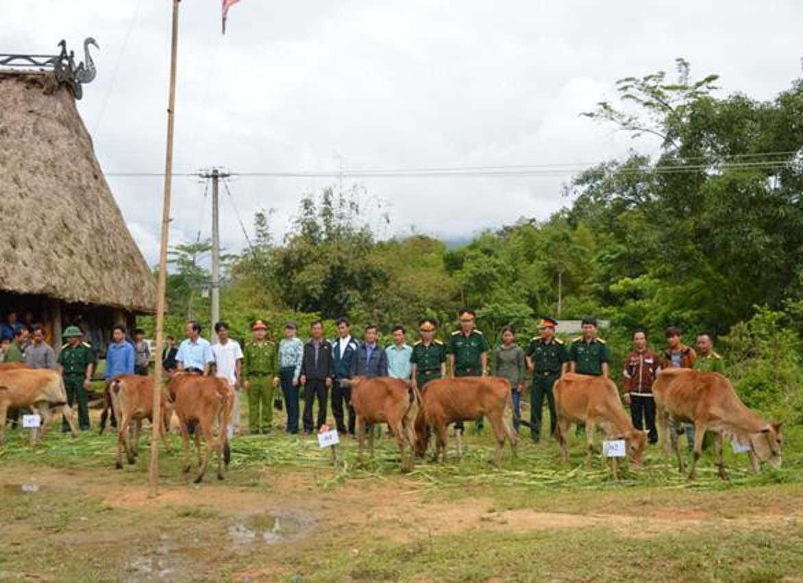 Đoàn 207 tặng bò hỗ trợ hộ nghèo. Ảnh: N.DIỆP