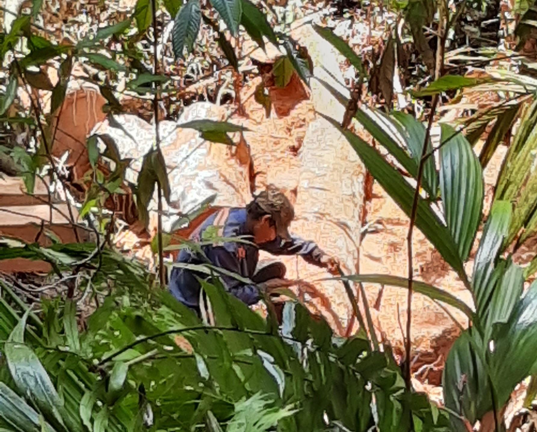 Một đối tượng khai thác rừng trái phép. Ảnh: THANH THẮNG