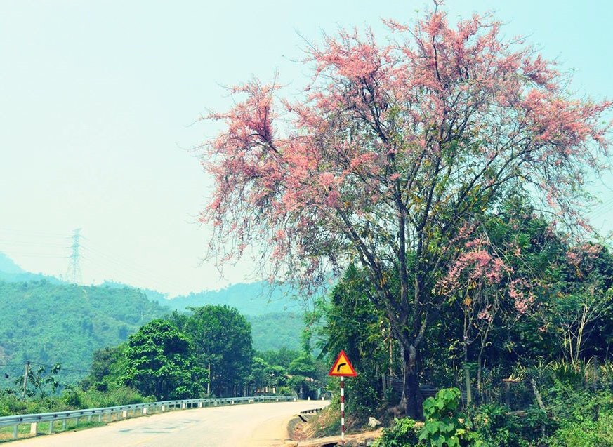 A scenery in Ca Dy commune, Nam Giang district