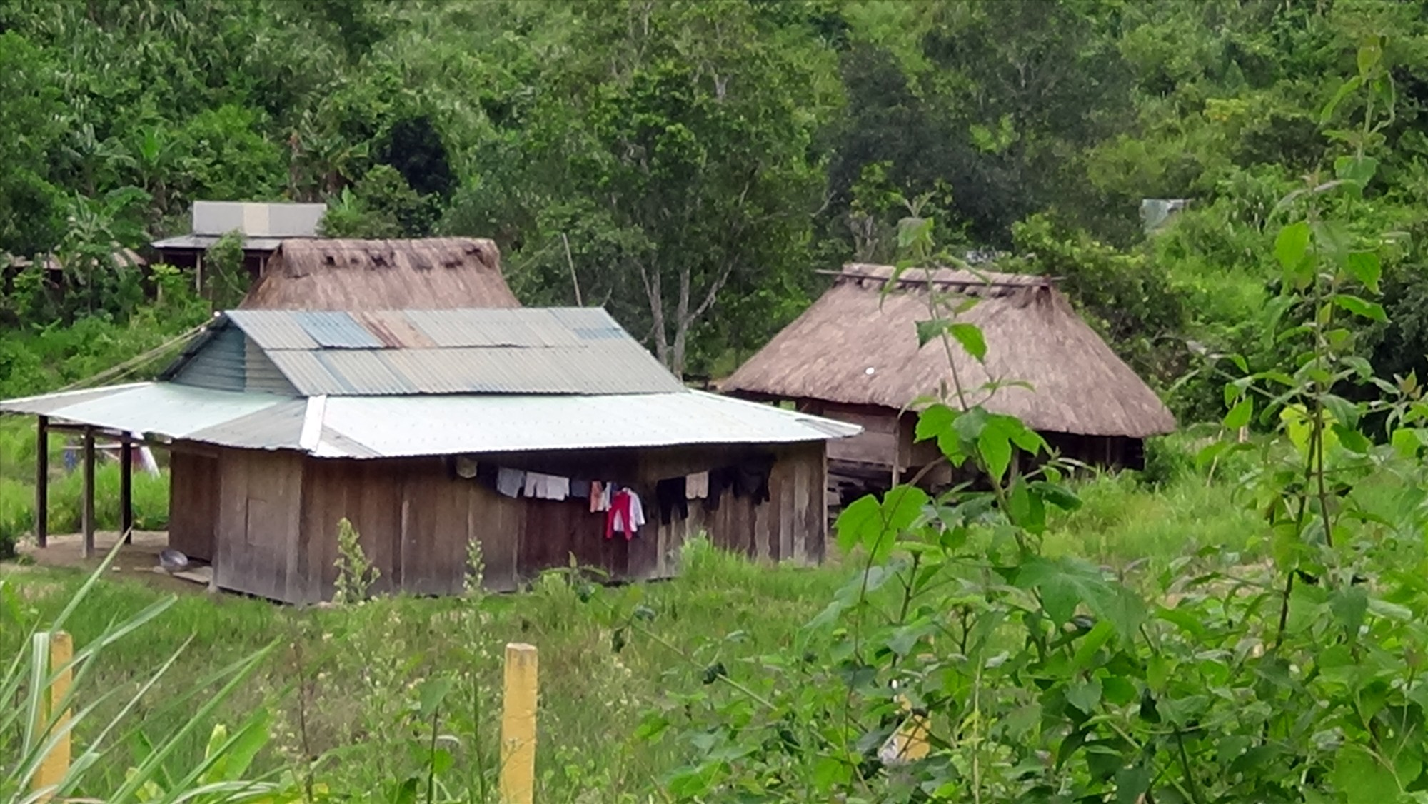 Những ngôi nhà trệt, vách ván mái tole như ở xã La Êê đang dần thay thế những ngôi nhà sàn quen thuộc ở vùng cao Quảng Nam.