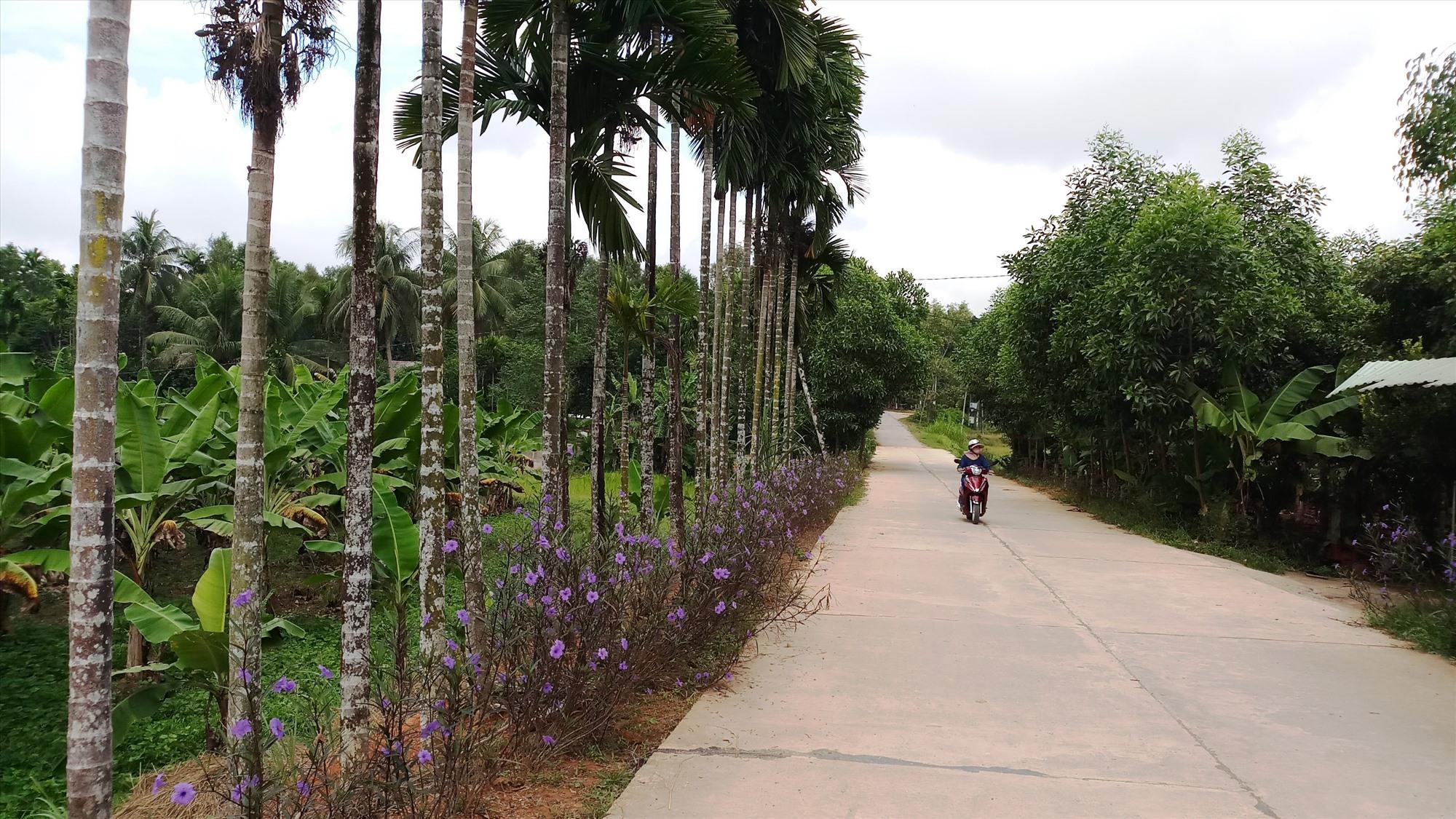 Diện mạo nông thôn xã Tiên An ngày càng khởi sắc.Ảnh: N.H