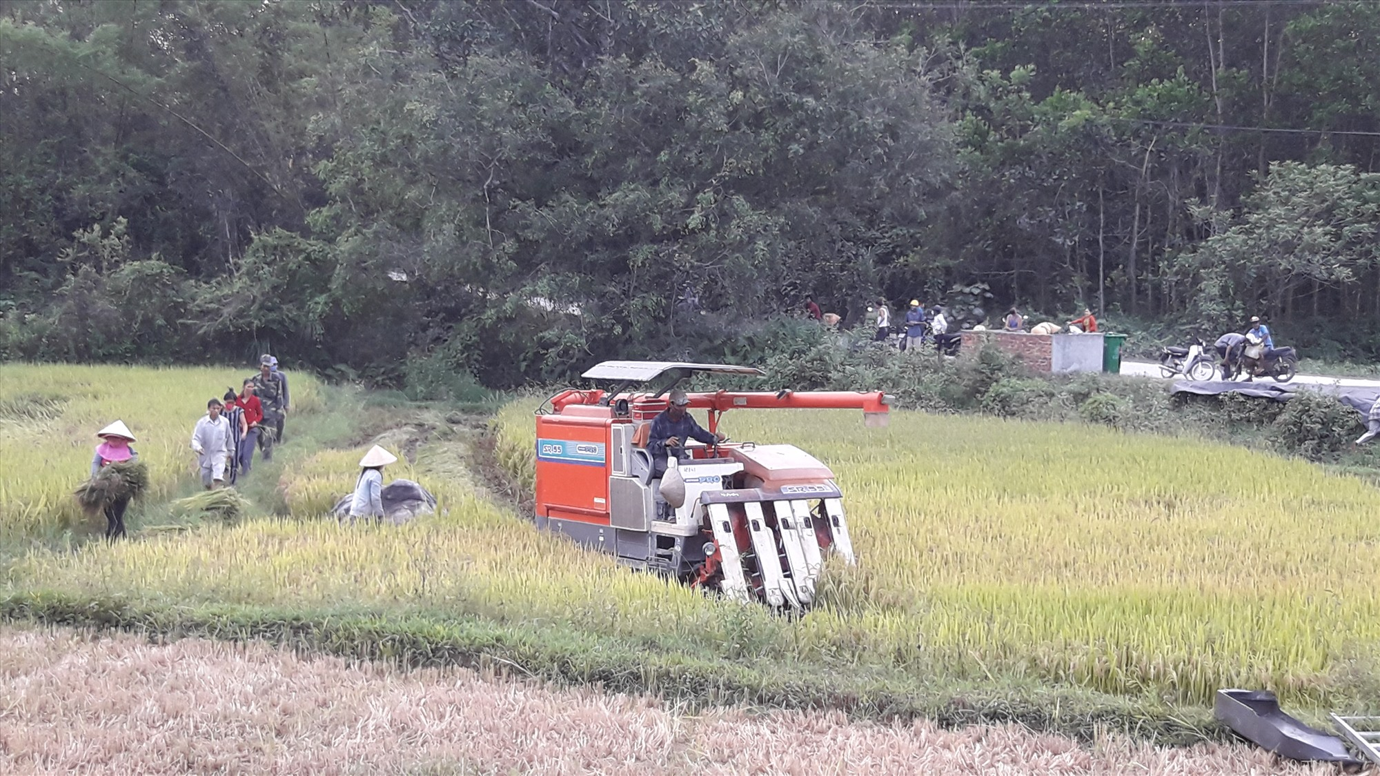 Tại xã Tiên Phong, nông dân chủ động cơ giới hóa trong sản xuất.Ảnh: P.H