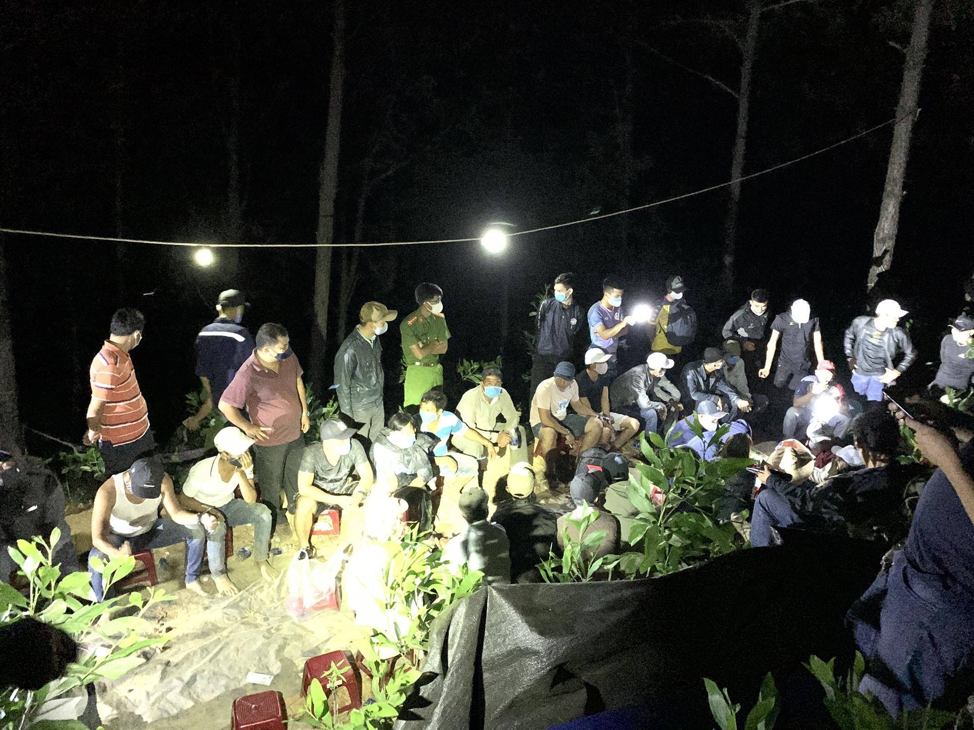 Hàng chục đối tượng bị bắt quả tang đánh bạc trong rừng thông thuộc địa bàn giáp ranh TP.Tam Kỳ và huyện Núi Thành. Ảnh: Đ.C