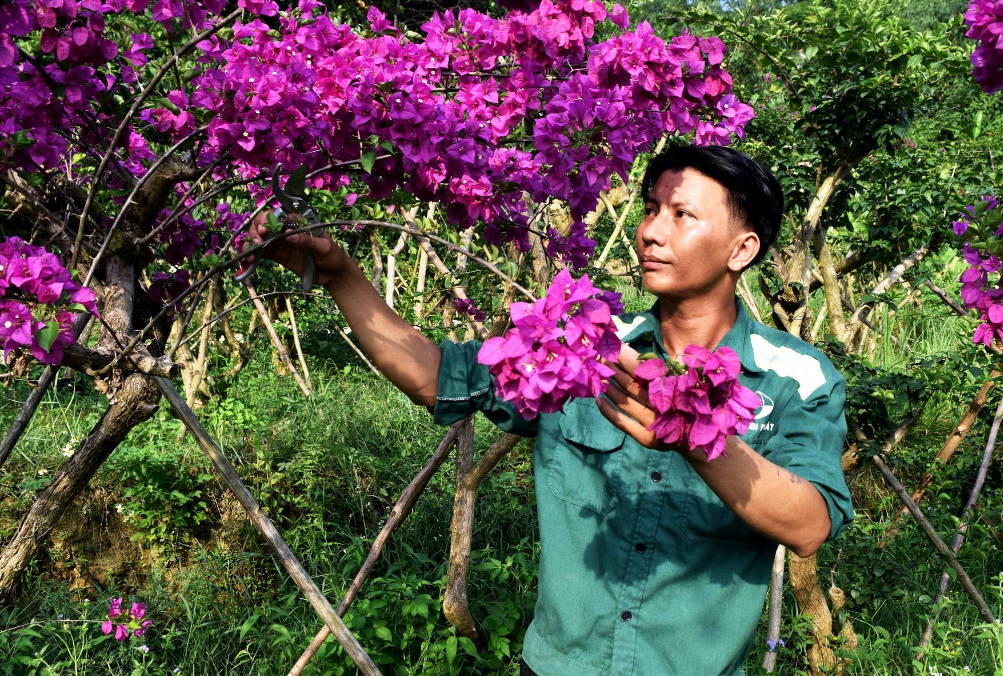 Chân dung chàng thanh niên khuyết tật Nguyễn Khắc Linh. Ảnh: THÁI CƯỜNG