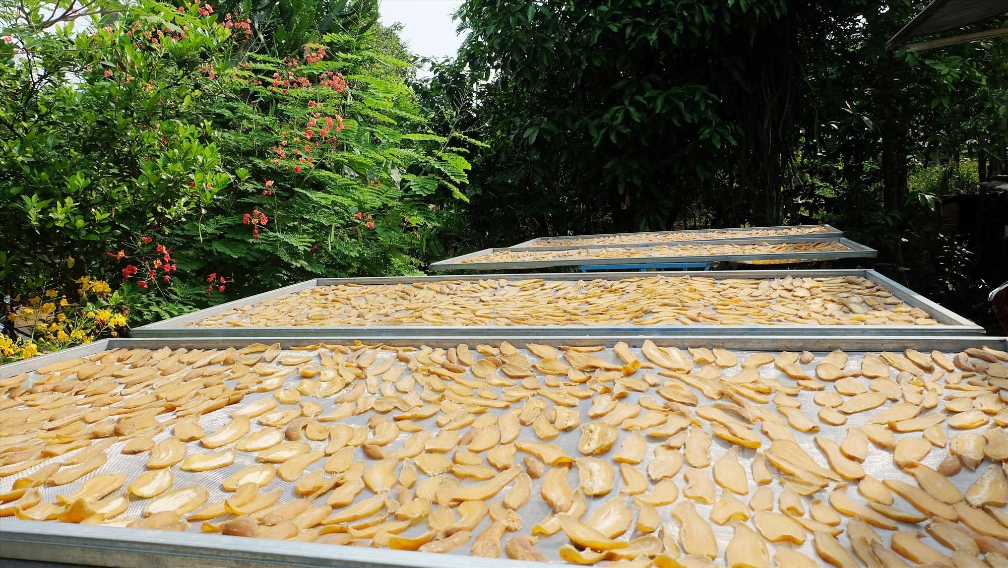 Những vỉ khoai được phơi trên cao để đảm bảo vệ sinh và nhiều nắng. Ảnh: M.L