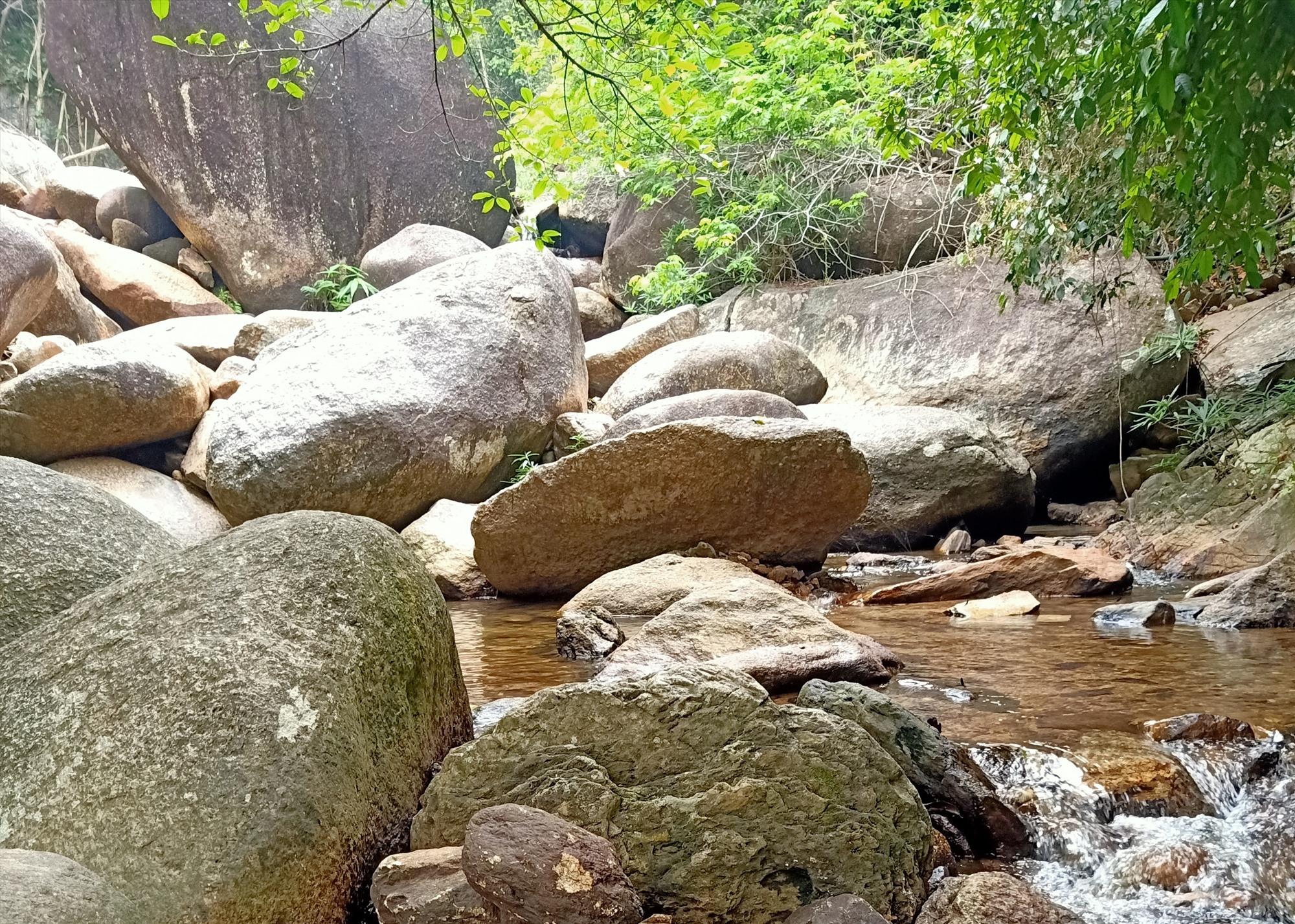 Khu vườn rừng Suối Xanh (Đại Đồng, Đại Lộc), điểm đến thú vị của du khách. Ảnh: TRIÊU NHAN