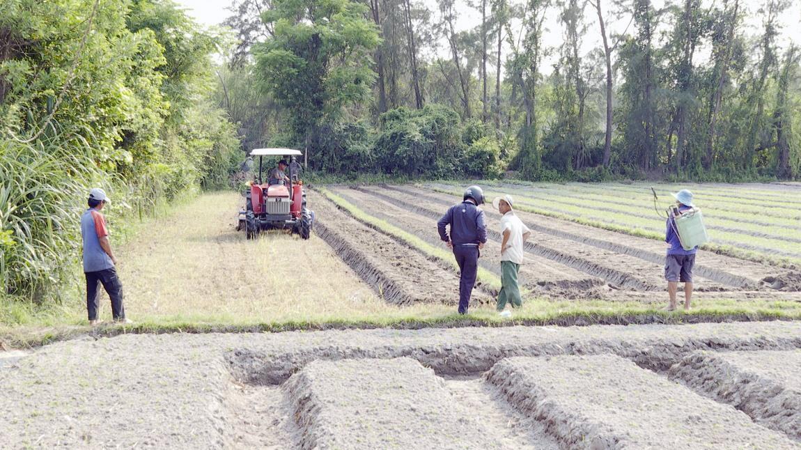 Xã Bình Nam tập trung liên kết trong sản xuất, đưa cơ giới nhiều khâu trên đồng ruộng. Ảnh: T.B
