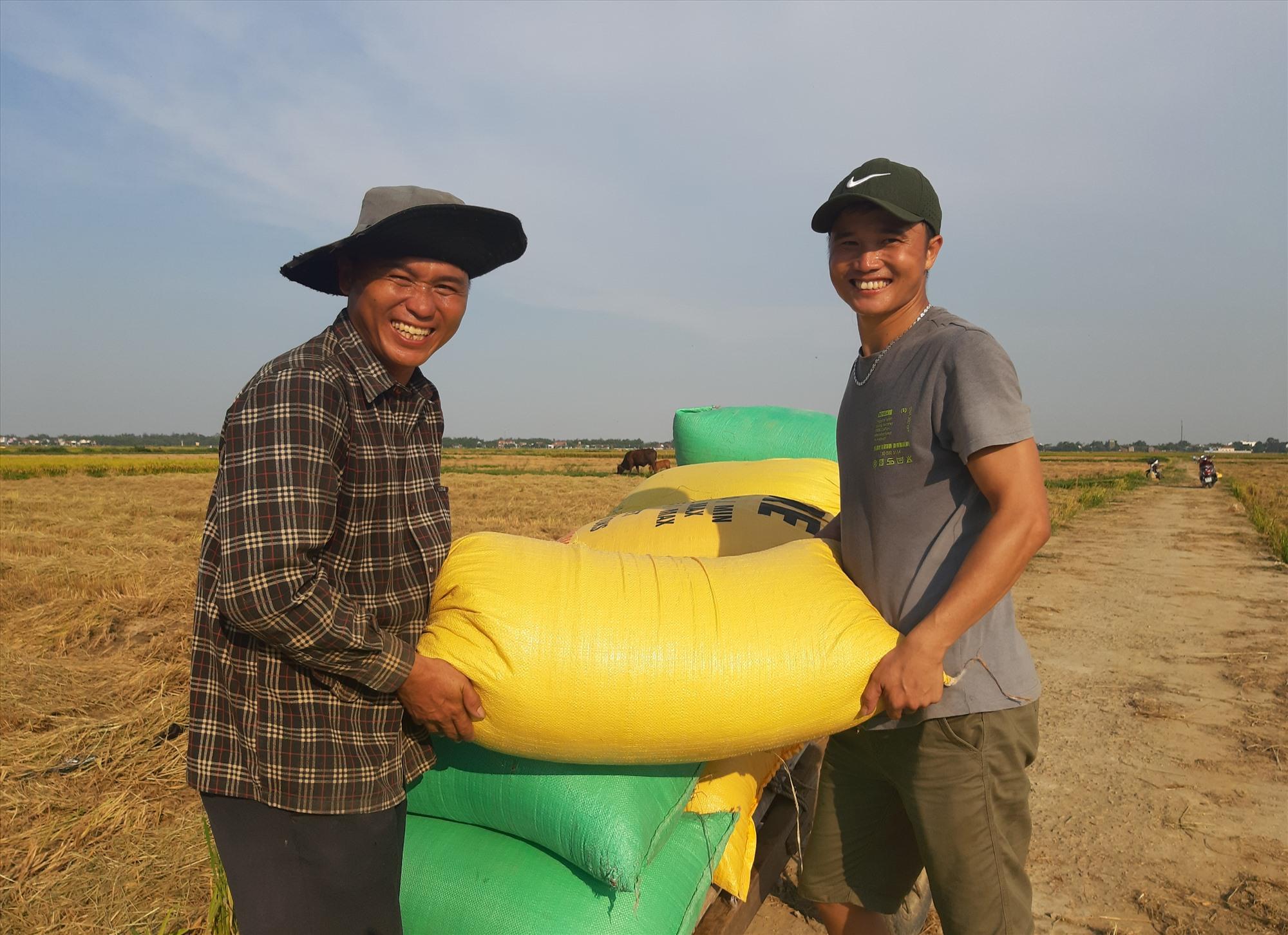 Sau khi thu hoạch, rất nhiều hộ dân chở nếp tươi đến những điểm tập kết cân bán cho tư thương từ các tỉnh phía Nam ra thu mua với mức giá 6.000 - 6.500 đồng/kg. Ảnh: T.R
