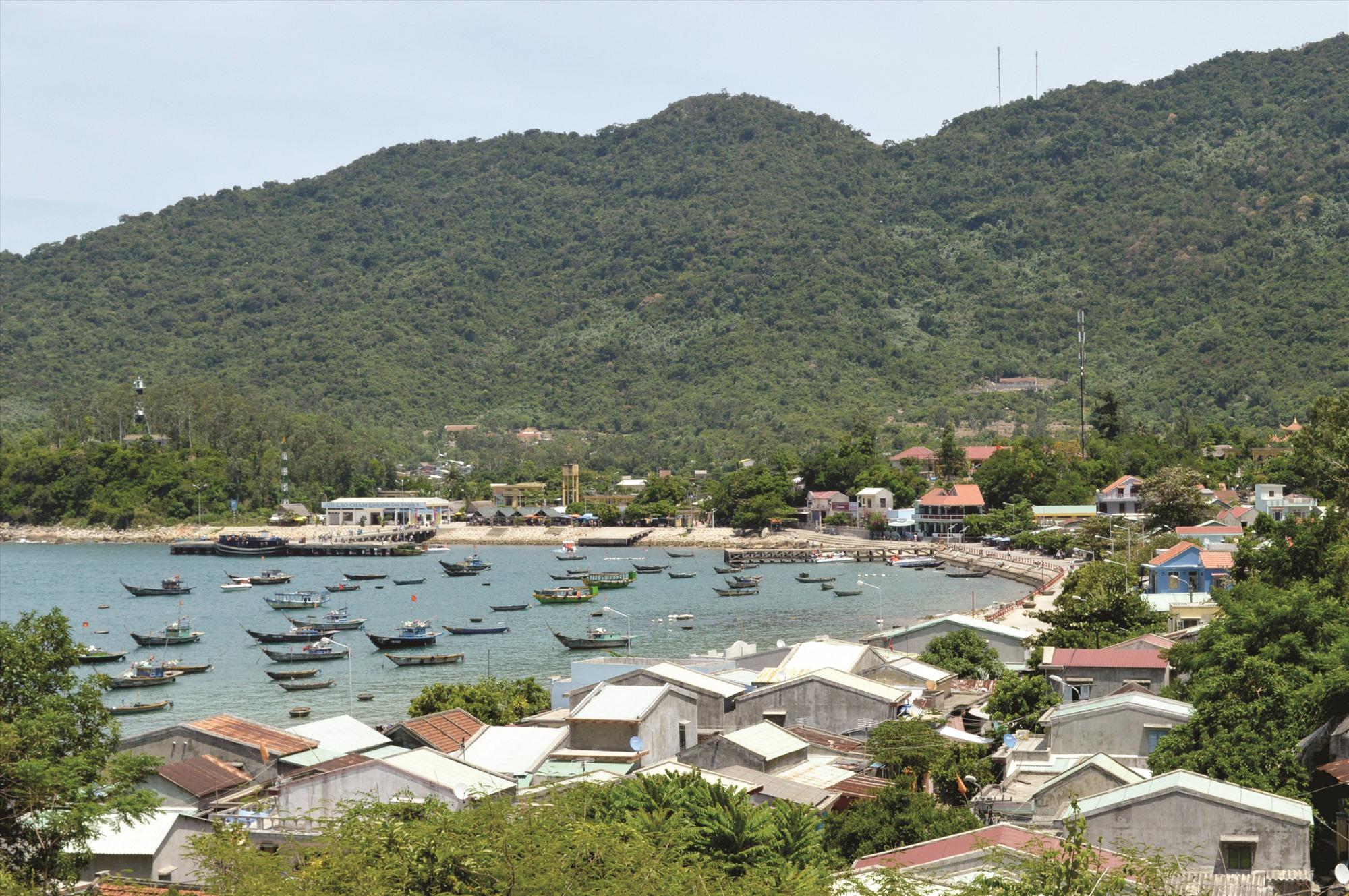 Thời gian tạm ngưng đón khách vừa qua đã giúp hệ sinh thái khu bảo tồn biển Cù Lao Chàm được phục hồi tốt hơn. Ảnh: V.LỘC