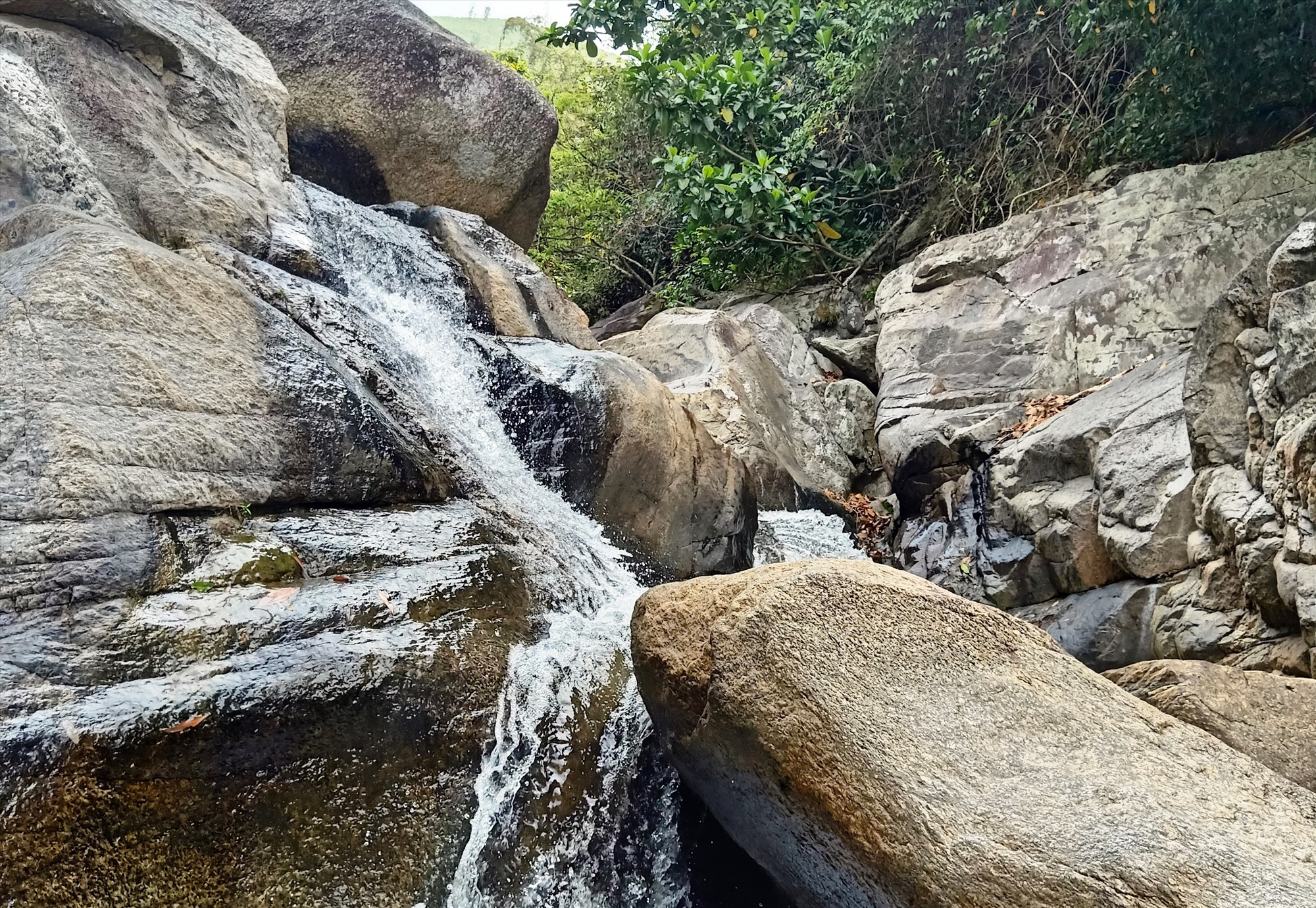 Vẻ đẹp hoang sơ của Khu du lịch sinh thái Sông Cùng, Đại Lãnh, Đại Lộc. Ảnh: HOÀNG LIÊN