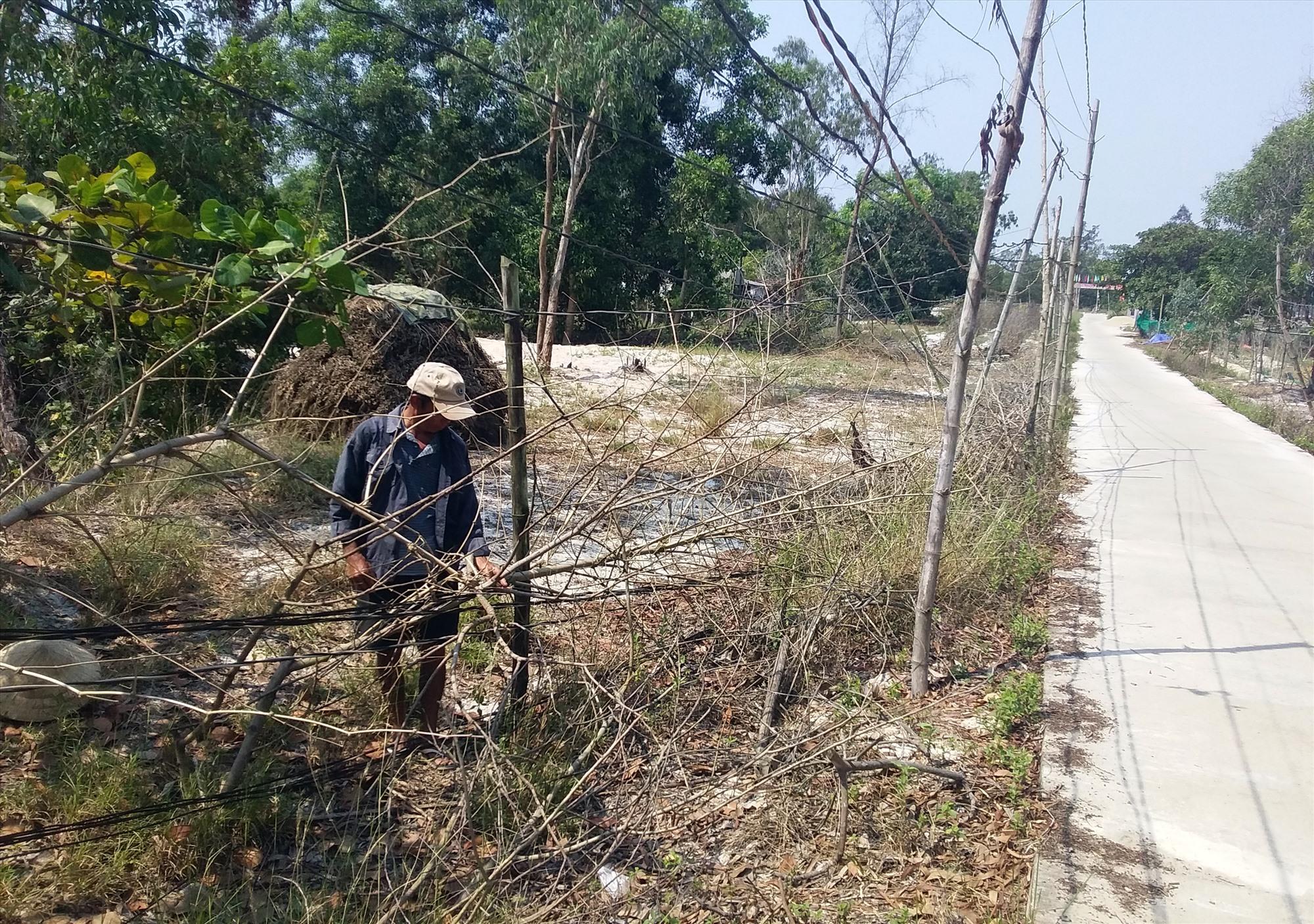 Đường dây điện vào tổ 19, thôn Bình Túy áp sát mặt đất. Ảnh: B.T