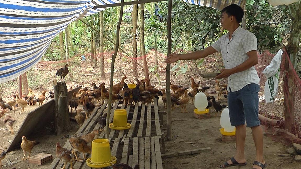 Anh Lê Văn Ân thành công với mô hình trang trại tổng hợp. Ảnh: D.B