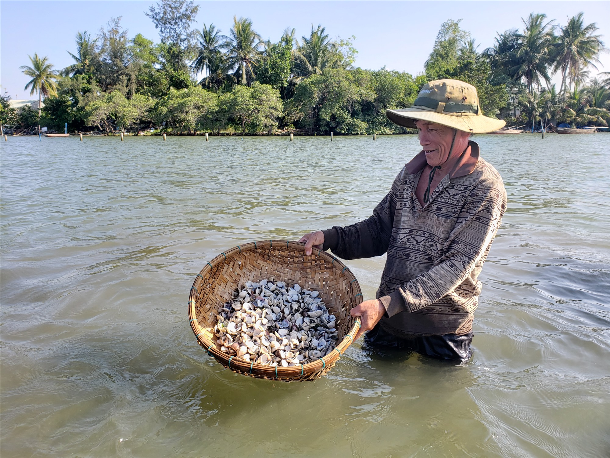 Nghêu nuôi ở sông Trường Giang chết hàng loạt. Ảnh: THANH THẮNG