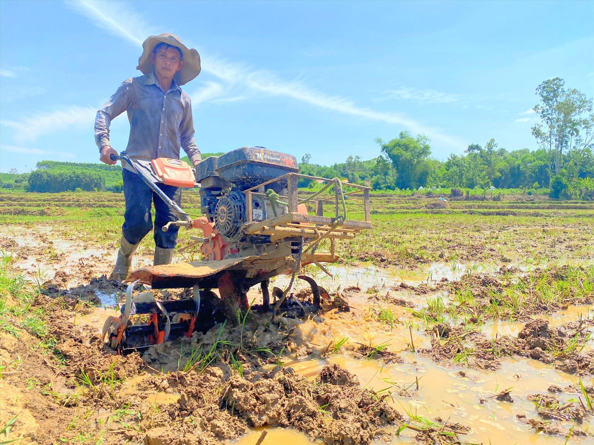 Ông Trần Thọ (thôn Phú Cốc Đông, xã Quế Thọ, Hiệp Đức) cho biết nguồn nước về ruộng kịp thời cho sản xuất vụ hè thu. Ảnh:T.SỸ