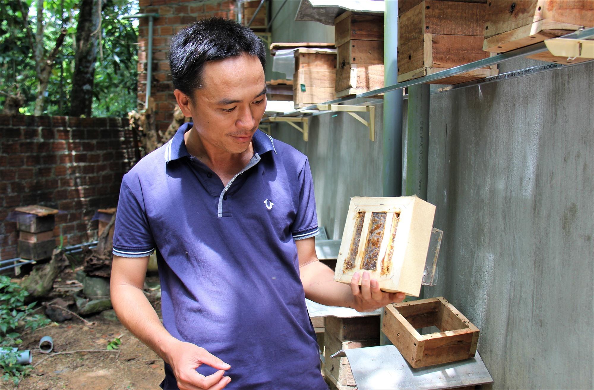 Một tầng mật ong dú mới vừa được lấy ra khỏi thùng. Ảnh: THANH THẮNG