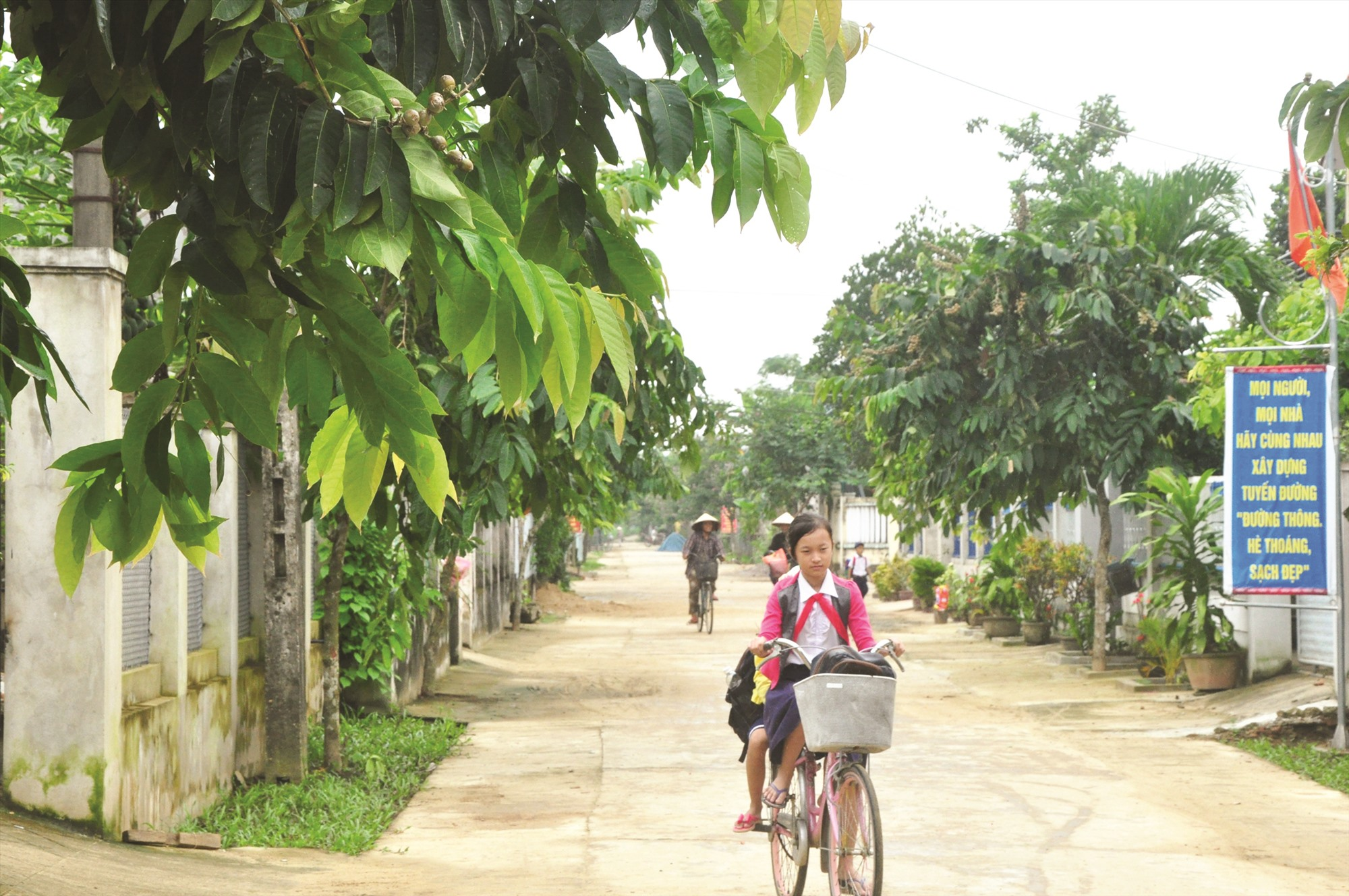 Đường giao thông nông thôn ở thôn Bến Đền Tây, xã Điện Quang, thị xã Điện Bàn. Ảnh: NGUYÊN ĐOAN