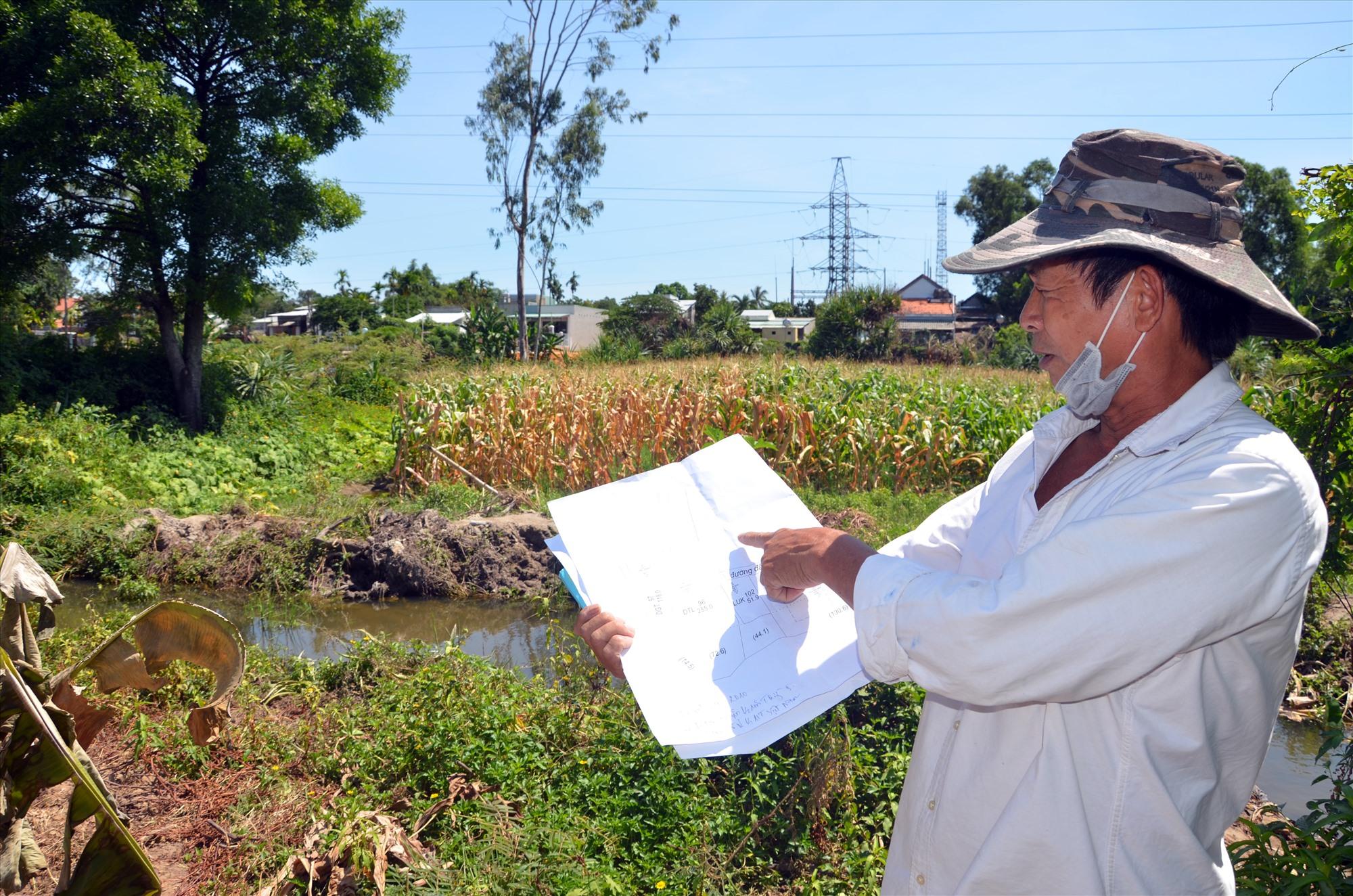 Ông Nguyễn Đính cho rằng, việc UBND phường đem xe đến san ủi mặt bằng, làm nước chảy vào ruộng gây hư hại cây trồng. Ảnh: T.H