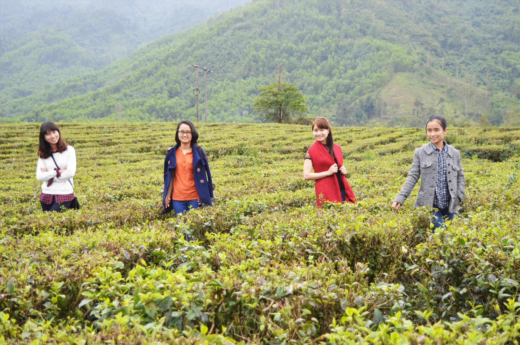 Tiềm năng khai thác du lịch sức khỏe, trị liệu ở vùng tây Quảng Nam rất lớn nhưng hầu như vẫn bỏ ngỏ. Ảnh: H.S