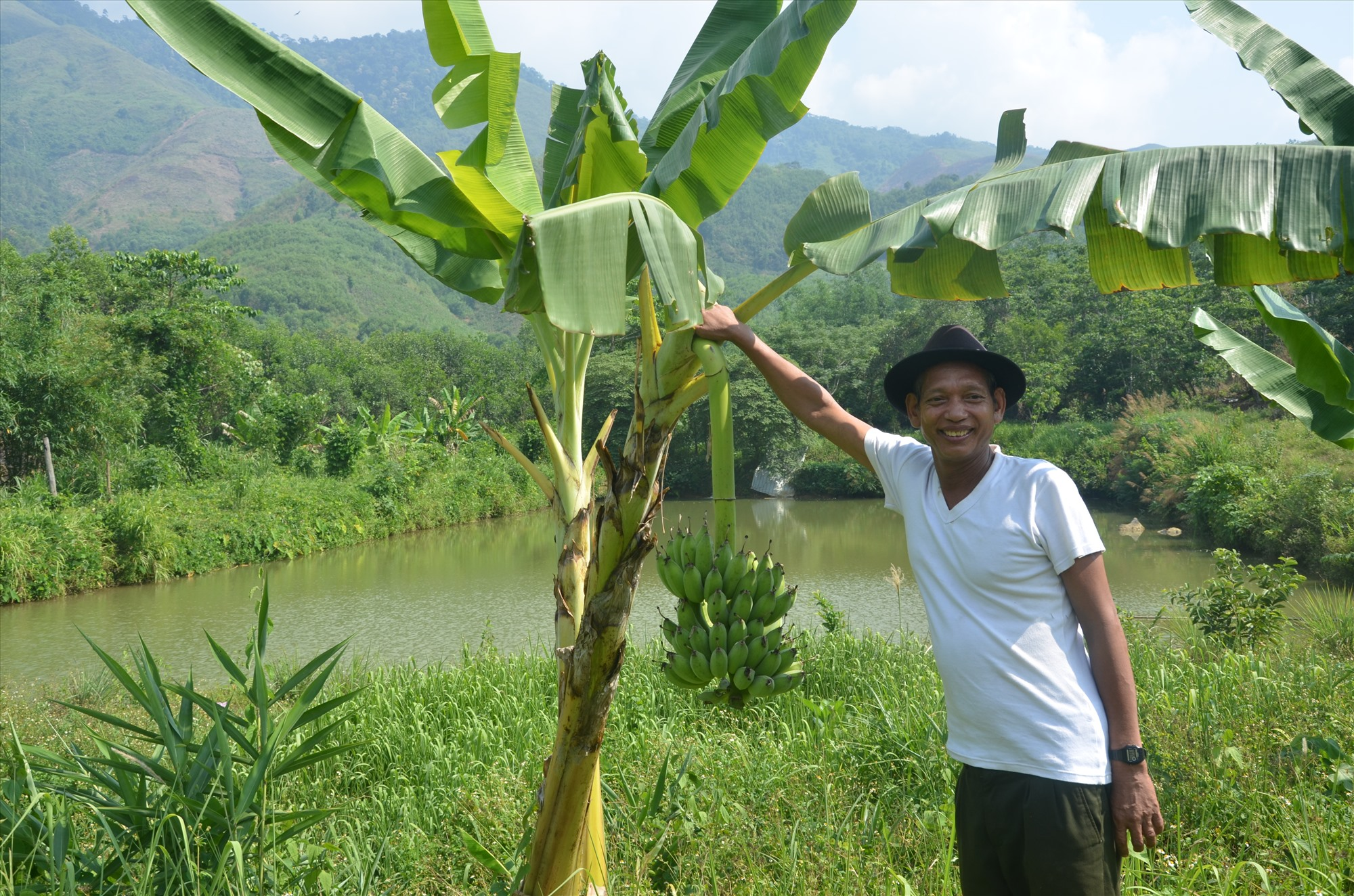 Mô hình trồng chuối phát triển rất mạnh ở huyện Đông Giang. Ảnh: T.N