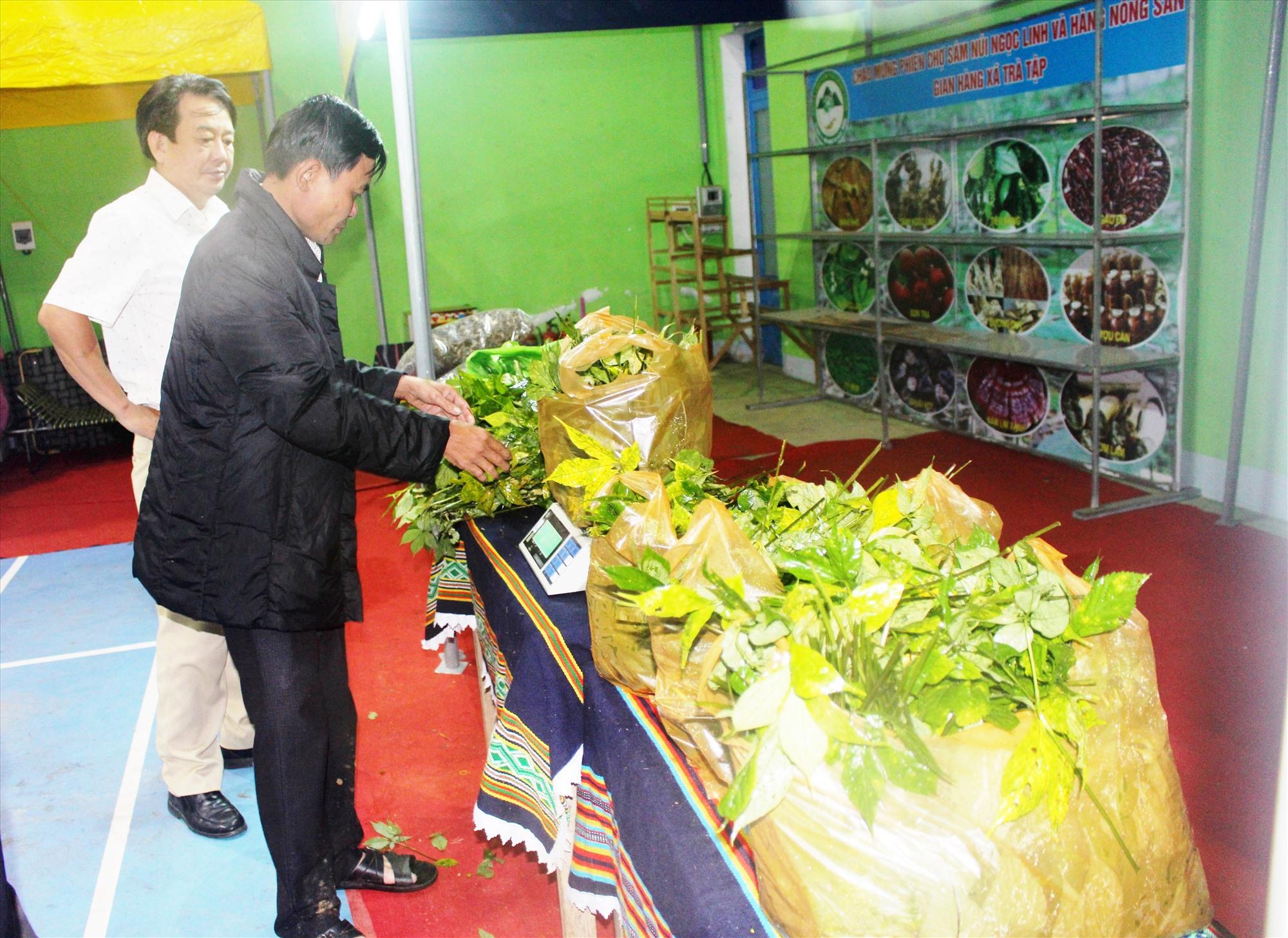 Lá sâm Ngọc Linh trở thành sản phẩm hàng hóa khá đắt được bán tại chợ sâm Ngọc Linh - Nam Trà My. Ảnh: HOÀNG LIÊN