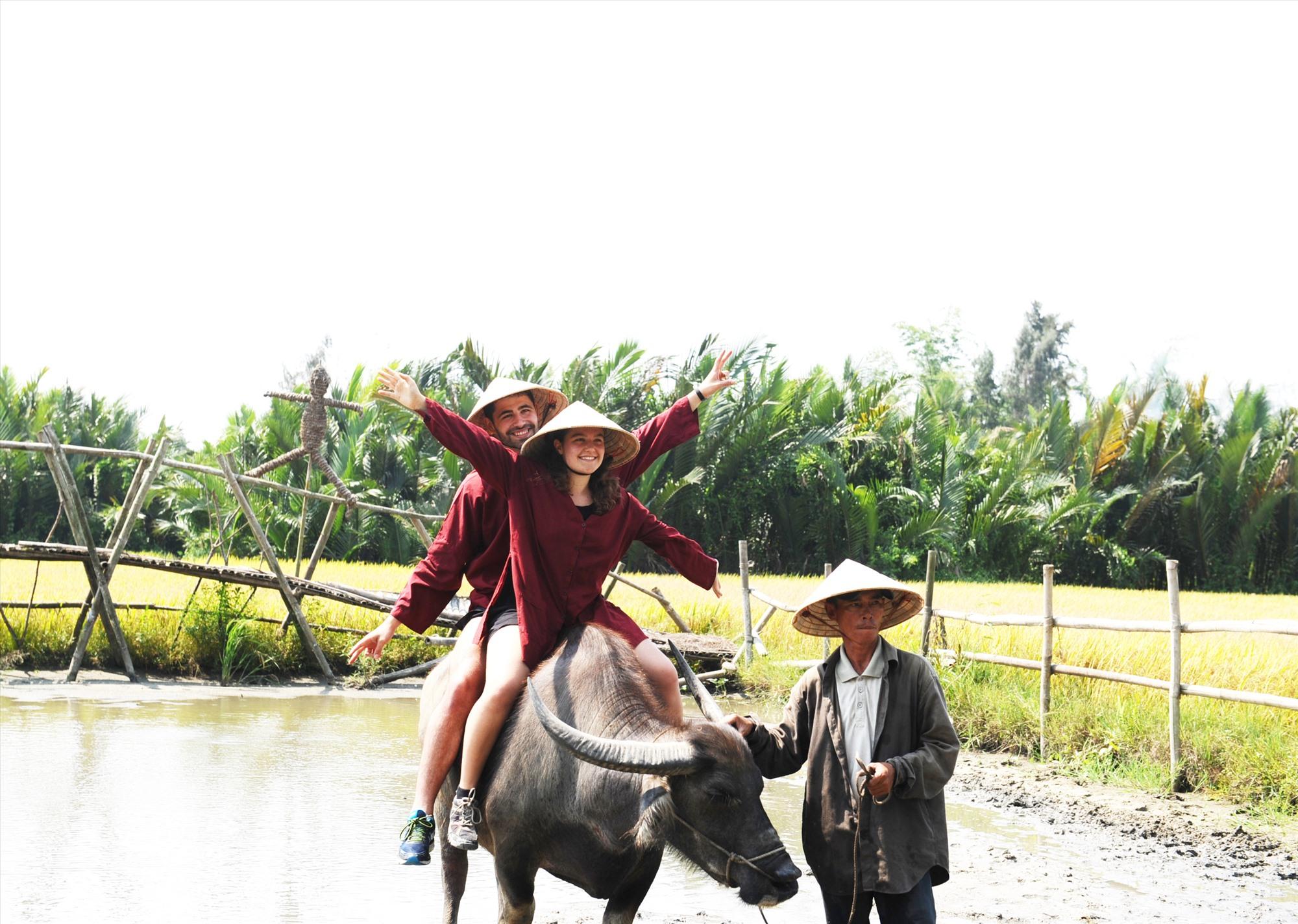Du khách trải nghiệm sản xuất nông nghiệp tại Hội An. Ảnh: M.HẢI