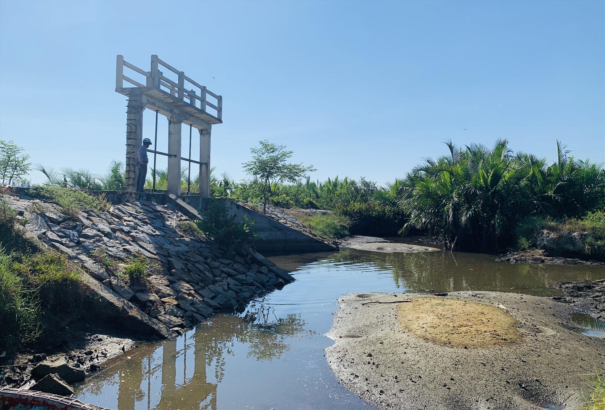 Nhiều đập para dọc đê sông Trường Giang ở xã Bình Giang bị hư hỏng nặng. Ảnh: PHAN VINH