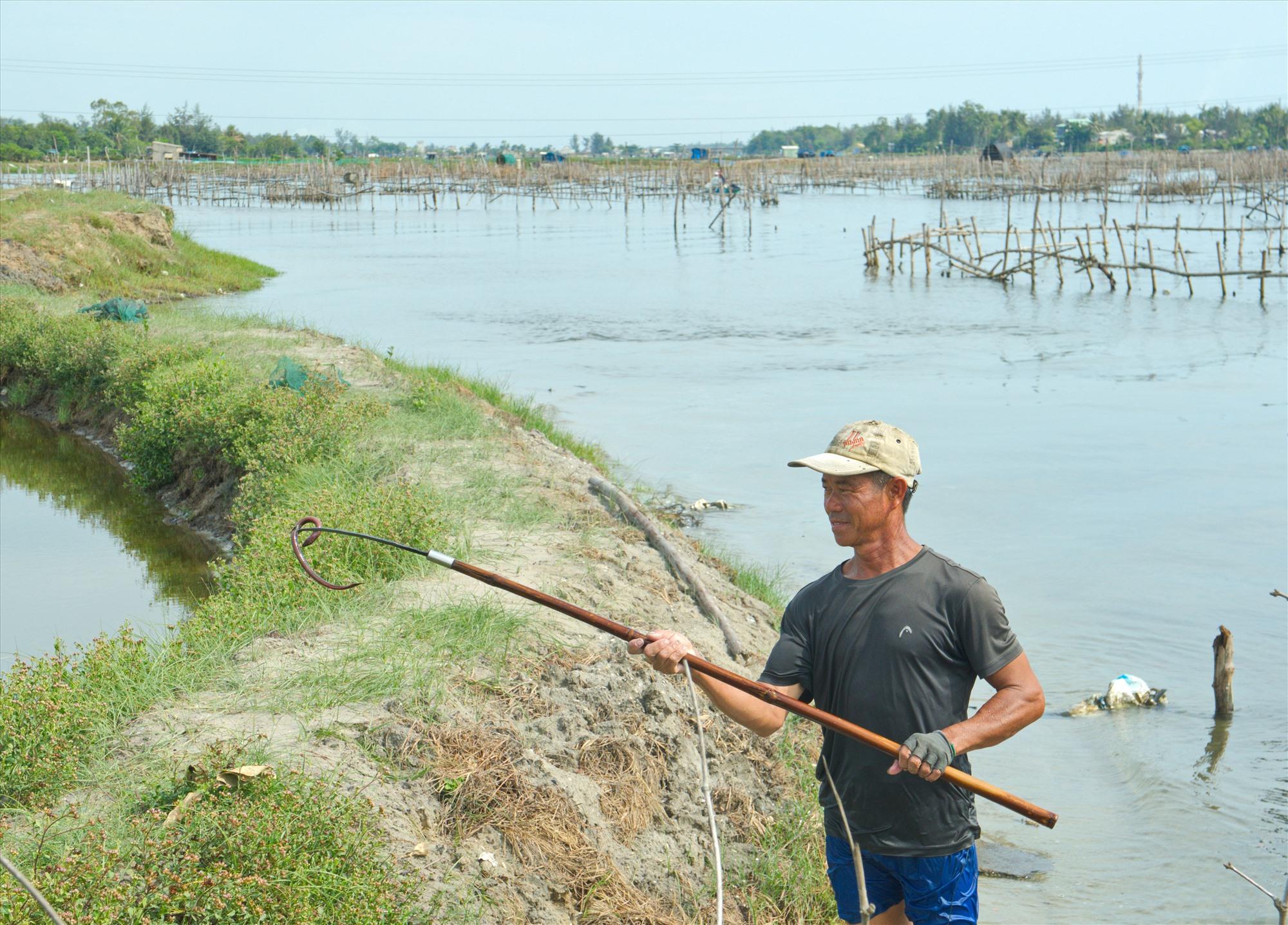 Ông Nguyễn Kim Ngọc (thôn Cổ Linh, xã Bình Sa, Thăng Bình) vừa cào được một con lươn. Ảnh: N.Đ.N