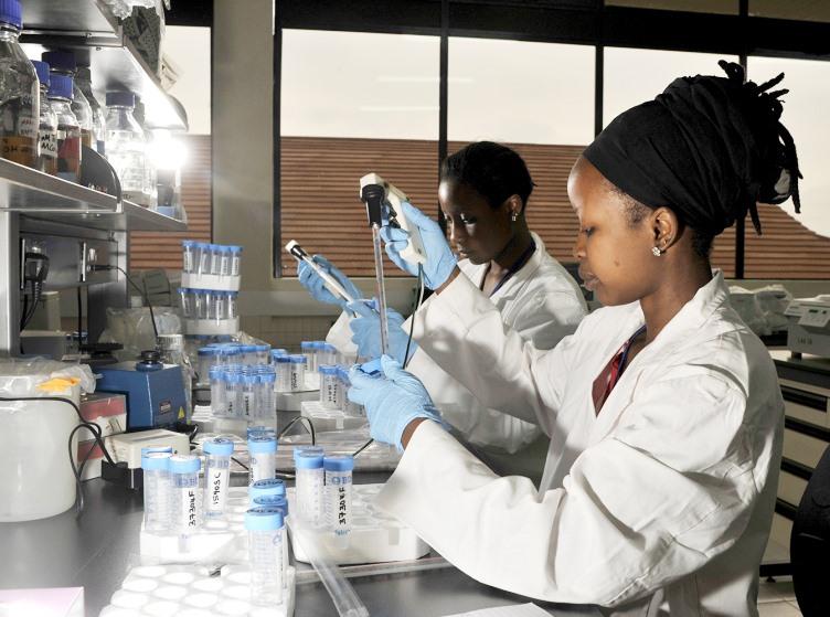 Phòng thí nghiệm sức khỏe động vật của ILRI tại Nairobi, Kenya.Ảnh: ILRI
