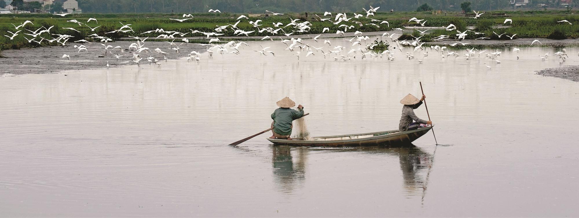 Thả lưới trên sông Trà Quế.