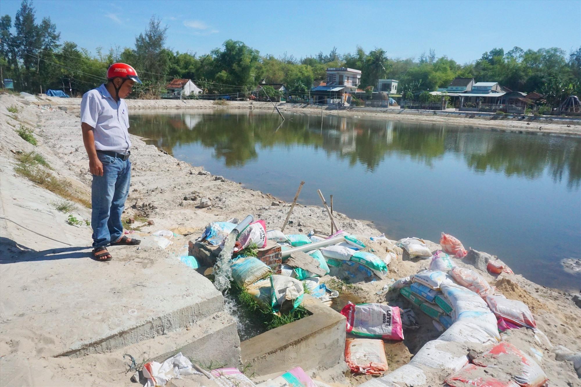 Ao gom nước nhĩ tại thôn Phước An (xã Bình Hải) đã cung cấp nước sản xuất cho hàng chục héc ta lúa. Ảnh: BIÊN THỰC