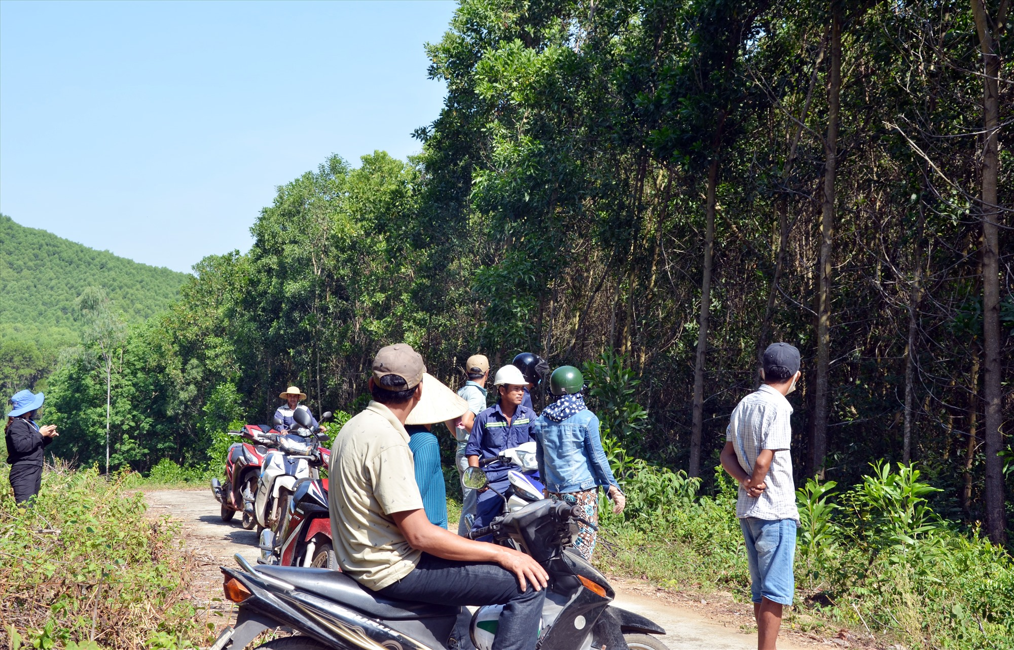 Các hộ dân thôn Bích An tại hiện trường đất rừng do UBND xã quản lý đã bị nhiều người trồng rừng, mua bán chuyển nhượng trái phép. Ảnh: H.N