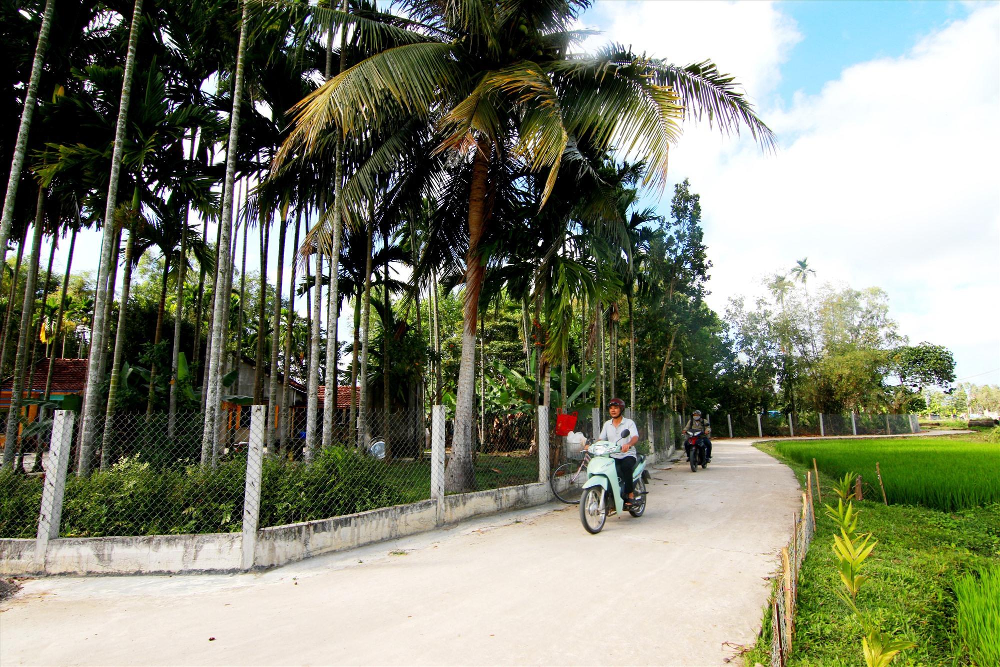 Diện mạo làng quê ở Tam Xuân 2 ngày càng khởi sắc. Ảnh: T.C