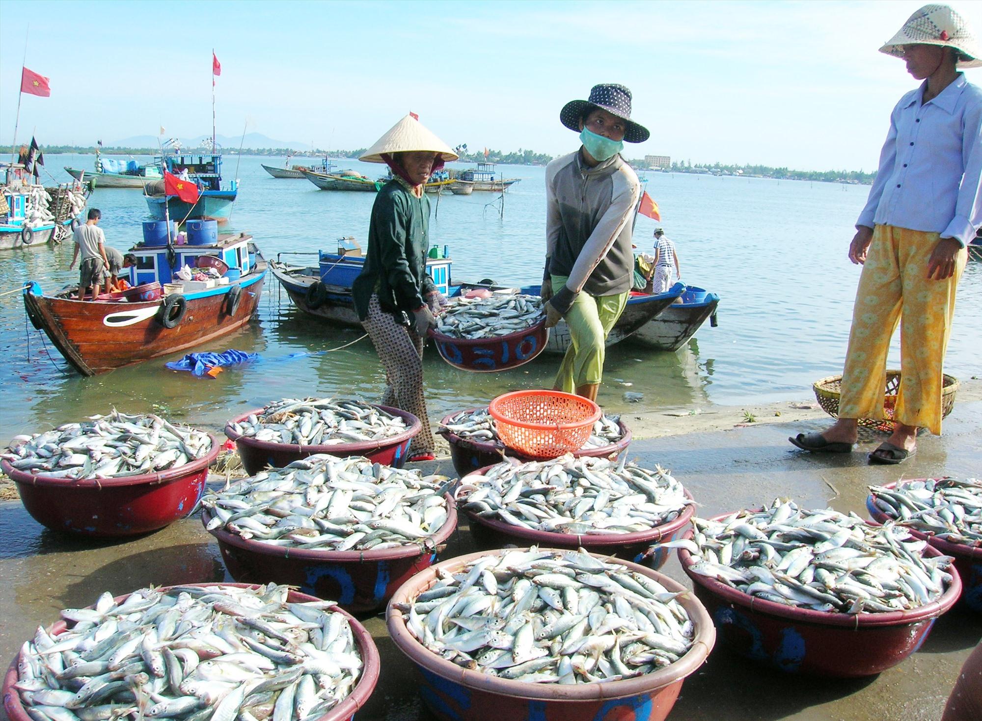 Mô hình chế biến thủy sản đã giúp nhiều hộ dân vùng ven biển cải thiện kinh tế. Ảnh: H.QUANG