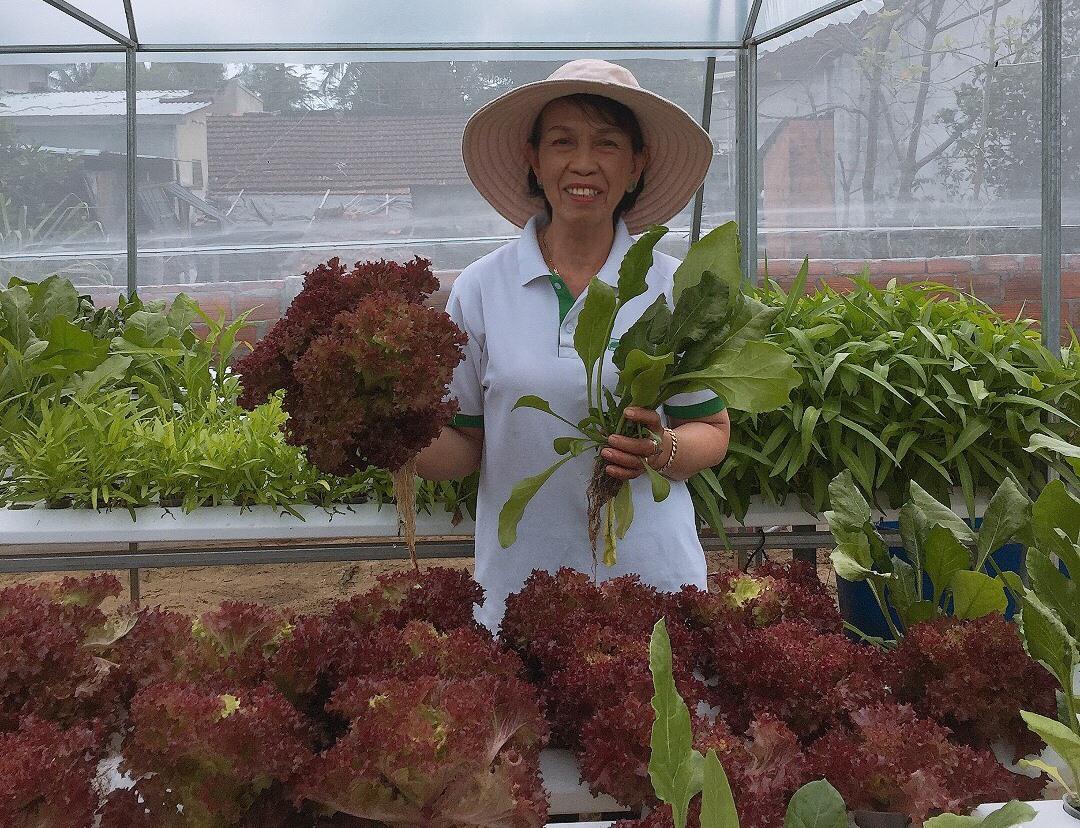 Mô hình trồng rau thủy canh của bà Nguyễn Thị Hương. Ảnh: T.M